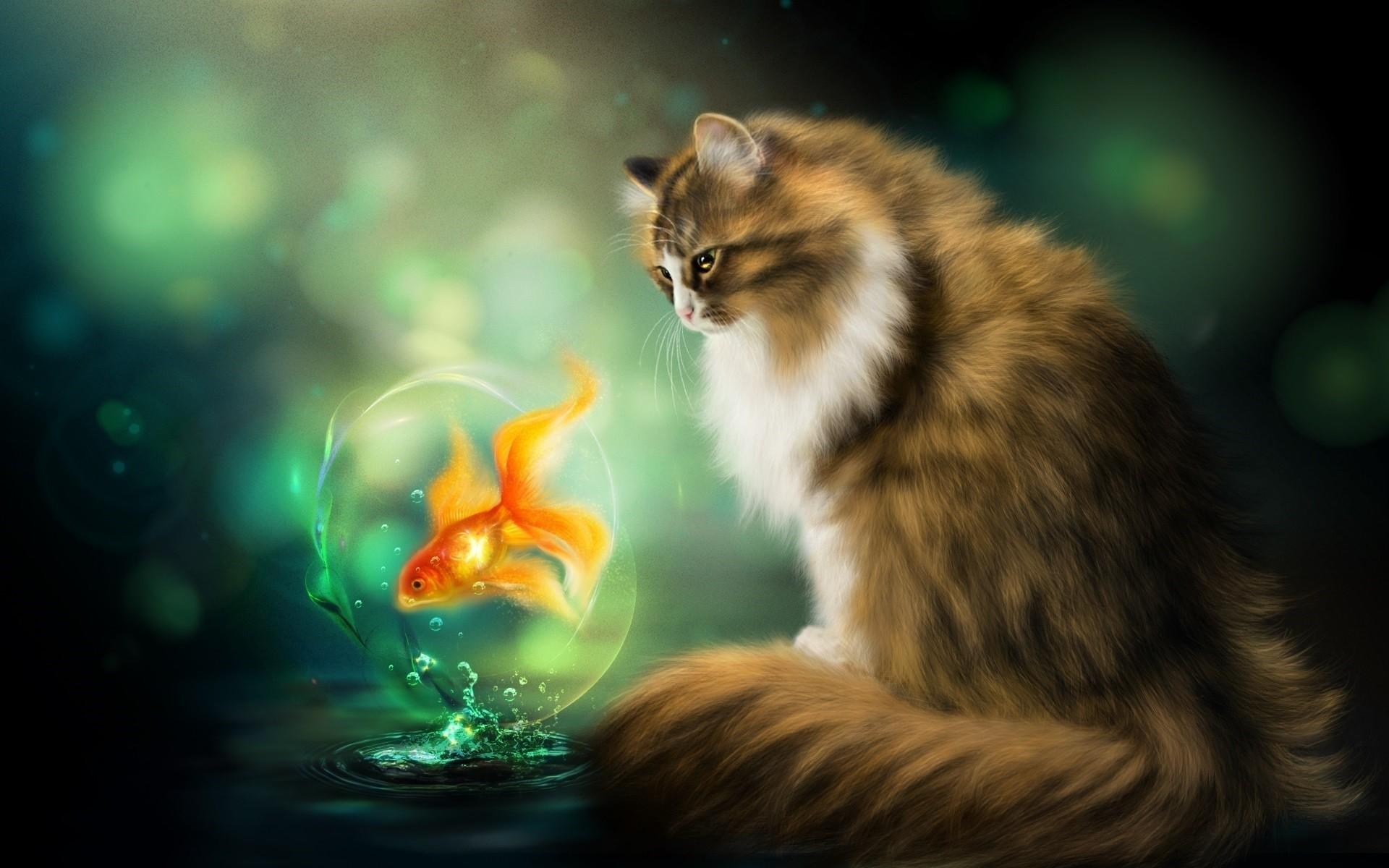 Черный котенок с золотой рыбкой  № 2954992  скачать