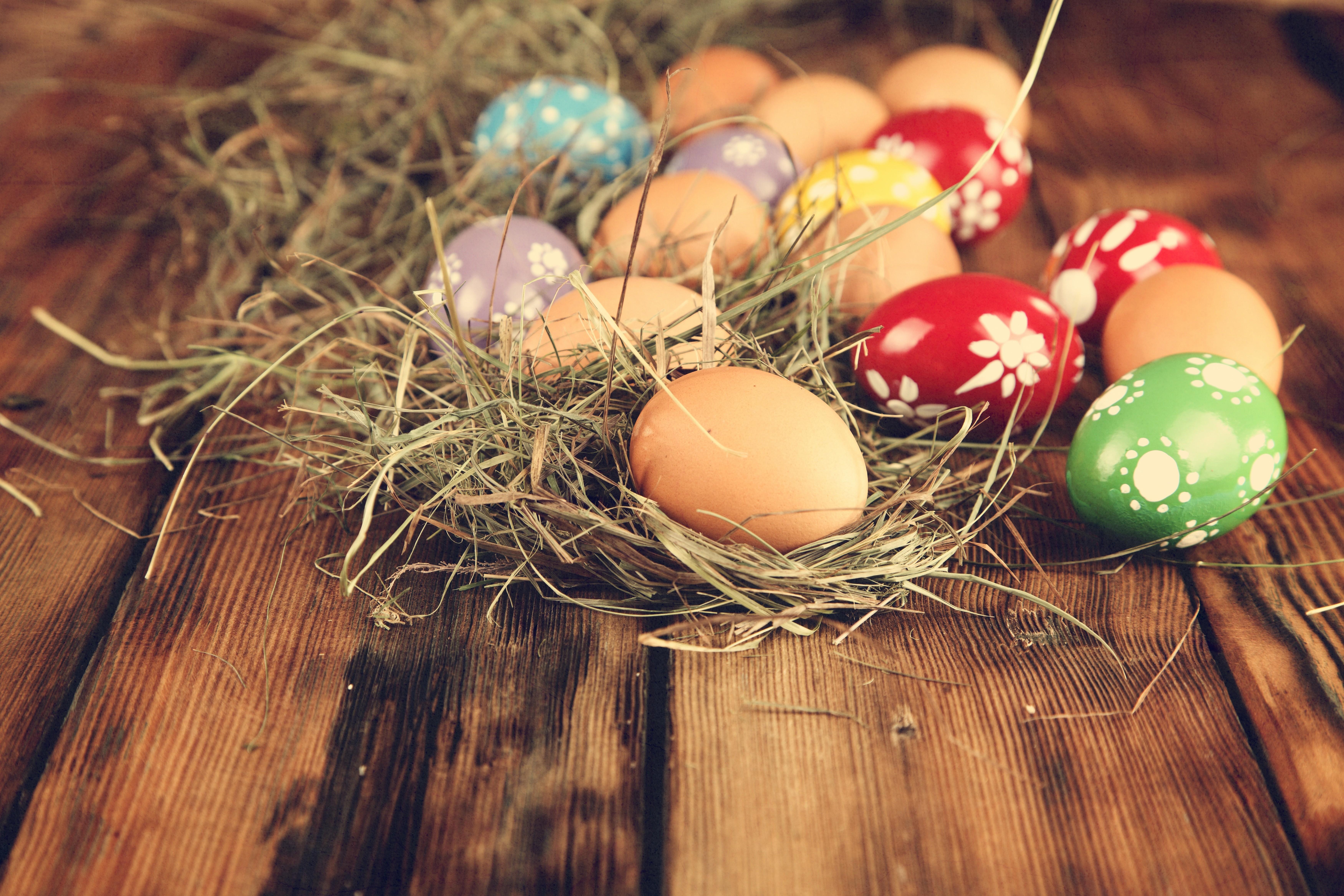 пасхальные яйца  № 1677981 без смс
