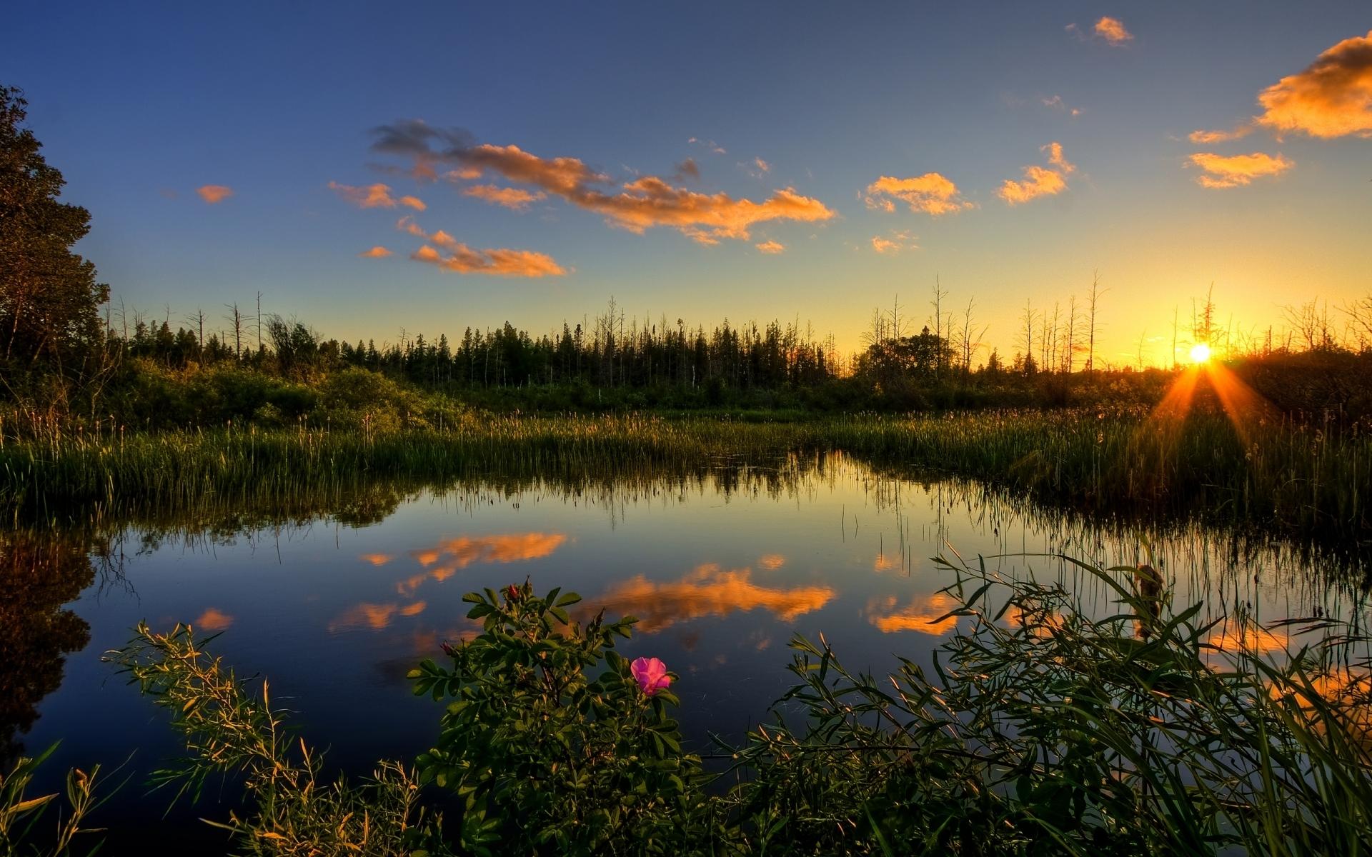 Картинки закат и природа