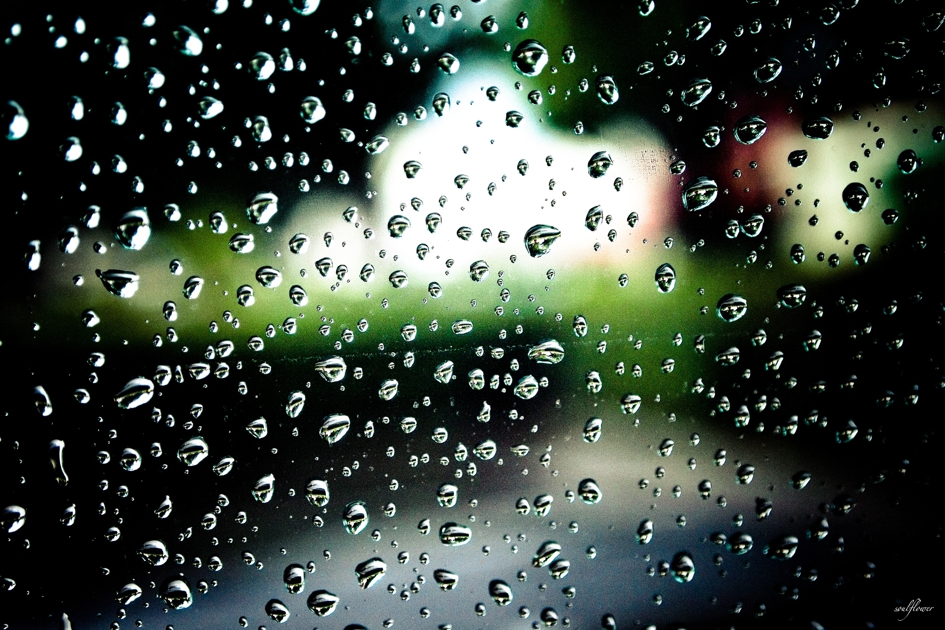 чашка пар капли вода дождь стекло Cup couples drops water the rain glass скачать
