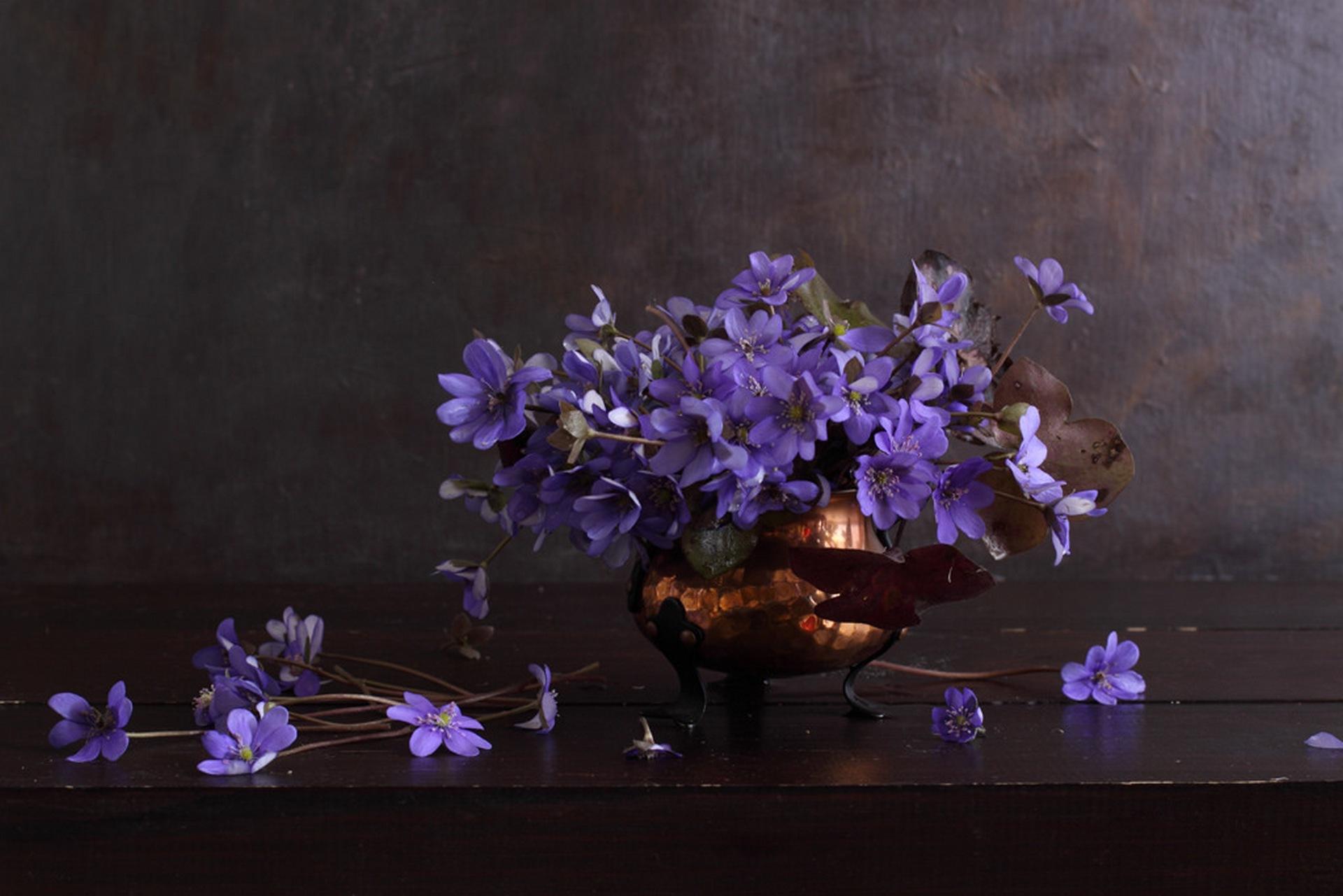 Синие цветы в вазе фото