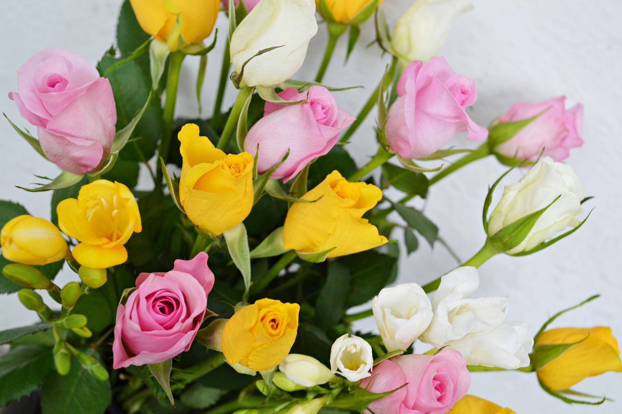 Букеты киев, природа цветов букет из роз
