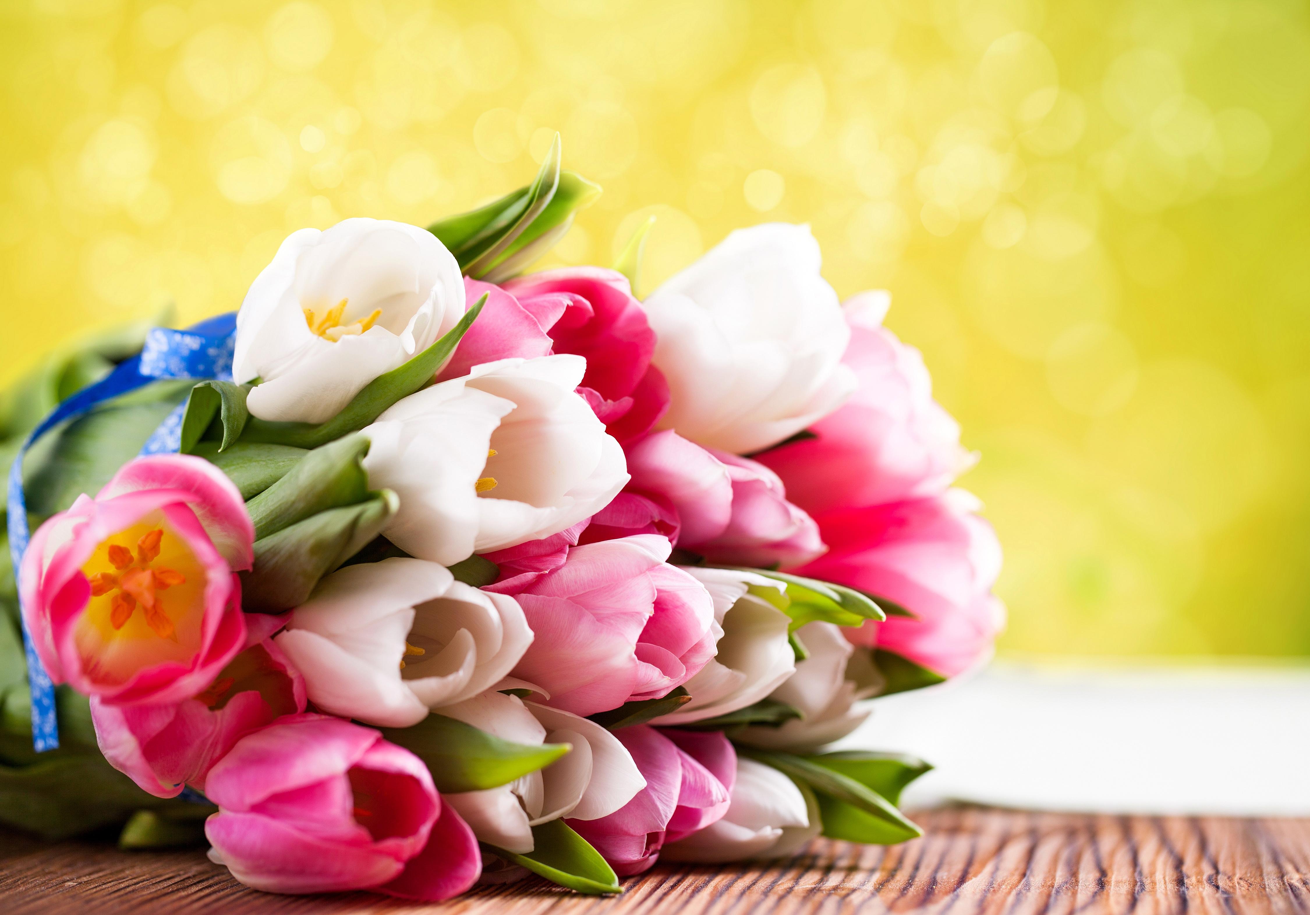 Открытки с весенними цветами фото красивые, открытки