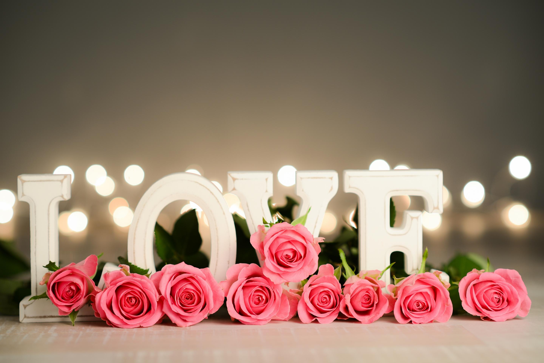 Цветы с любовью картинки, работе смешные