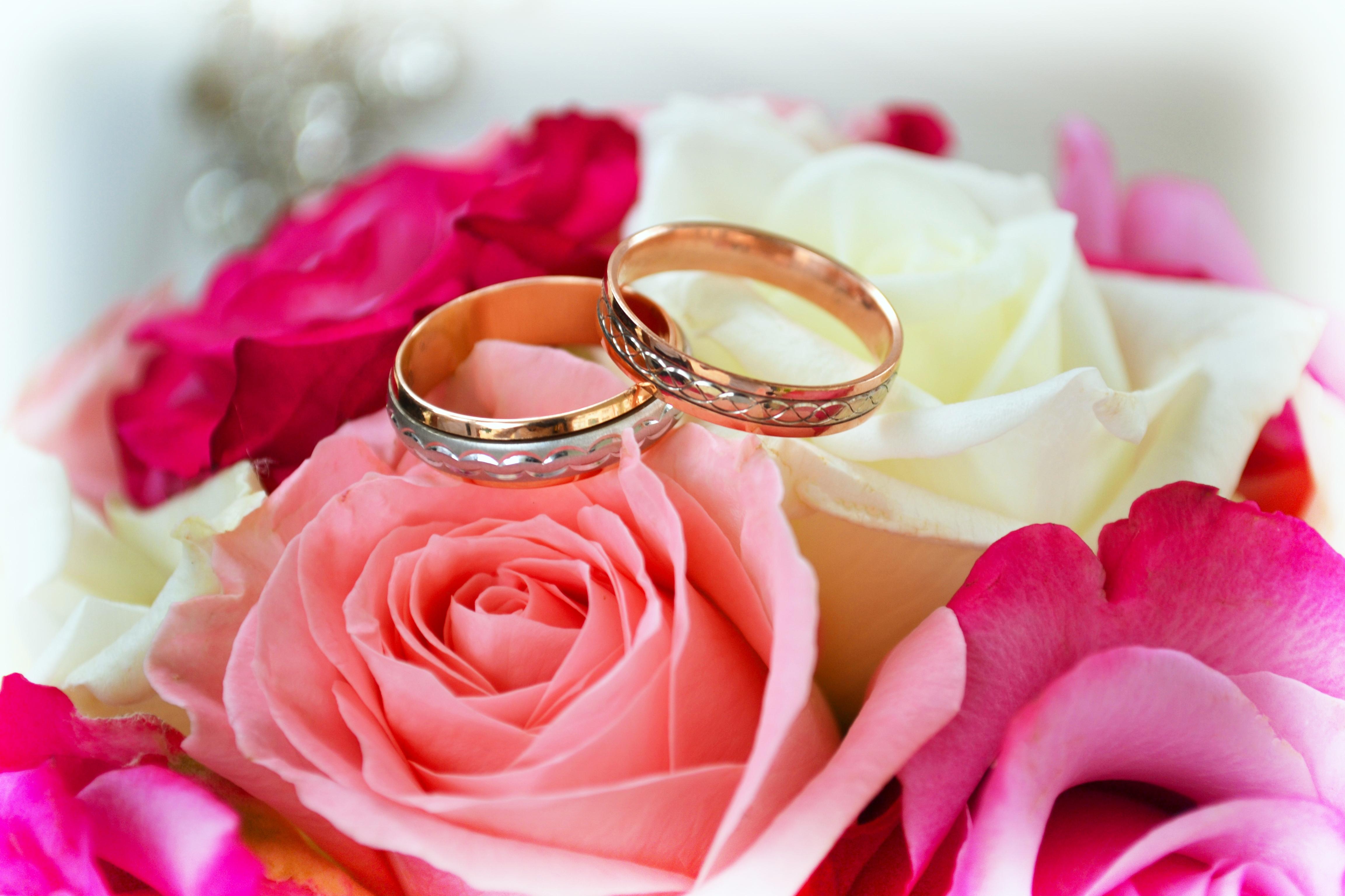 Кольца с цветами : картинки и фото кольца и цветы, скачать изображения 83