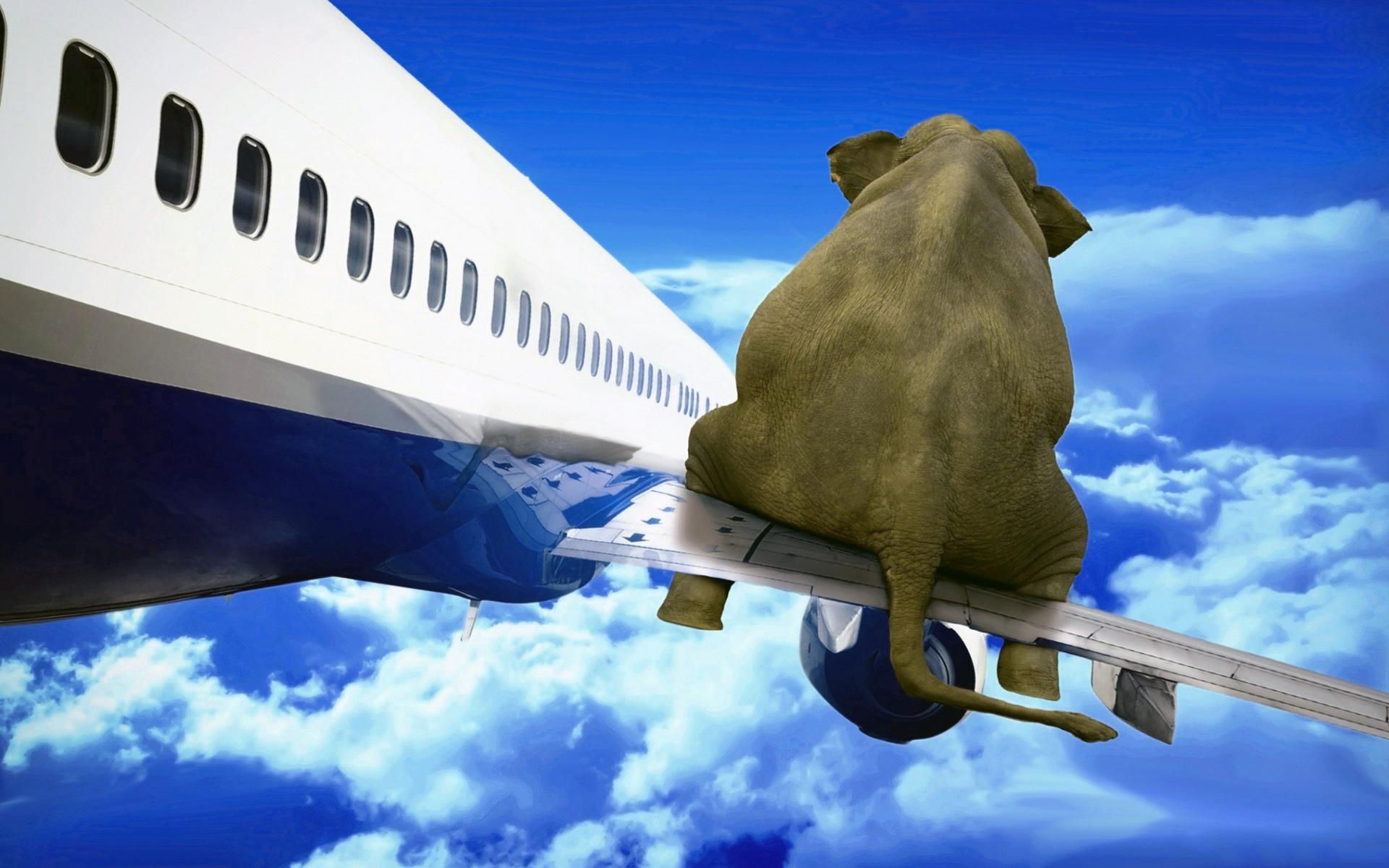 Шаблоном, открытка счастливого пути самолетом
