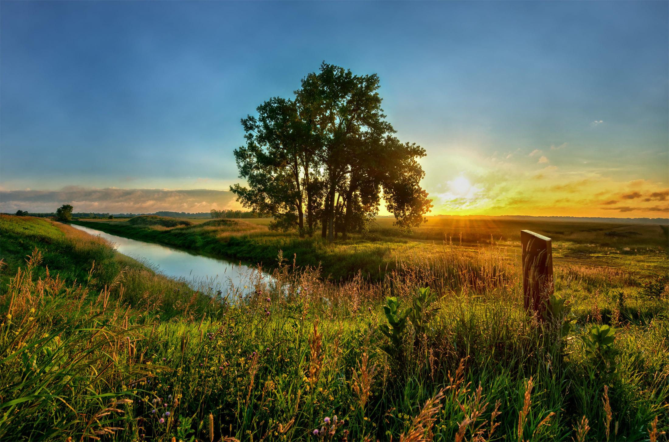 закат трава цветы озеро  № 1025331 без смс
