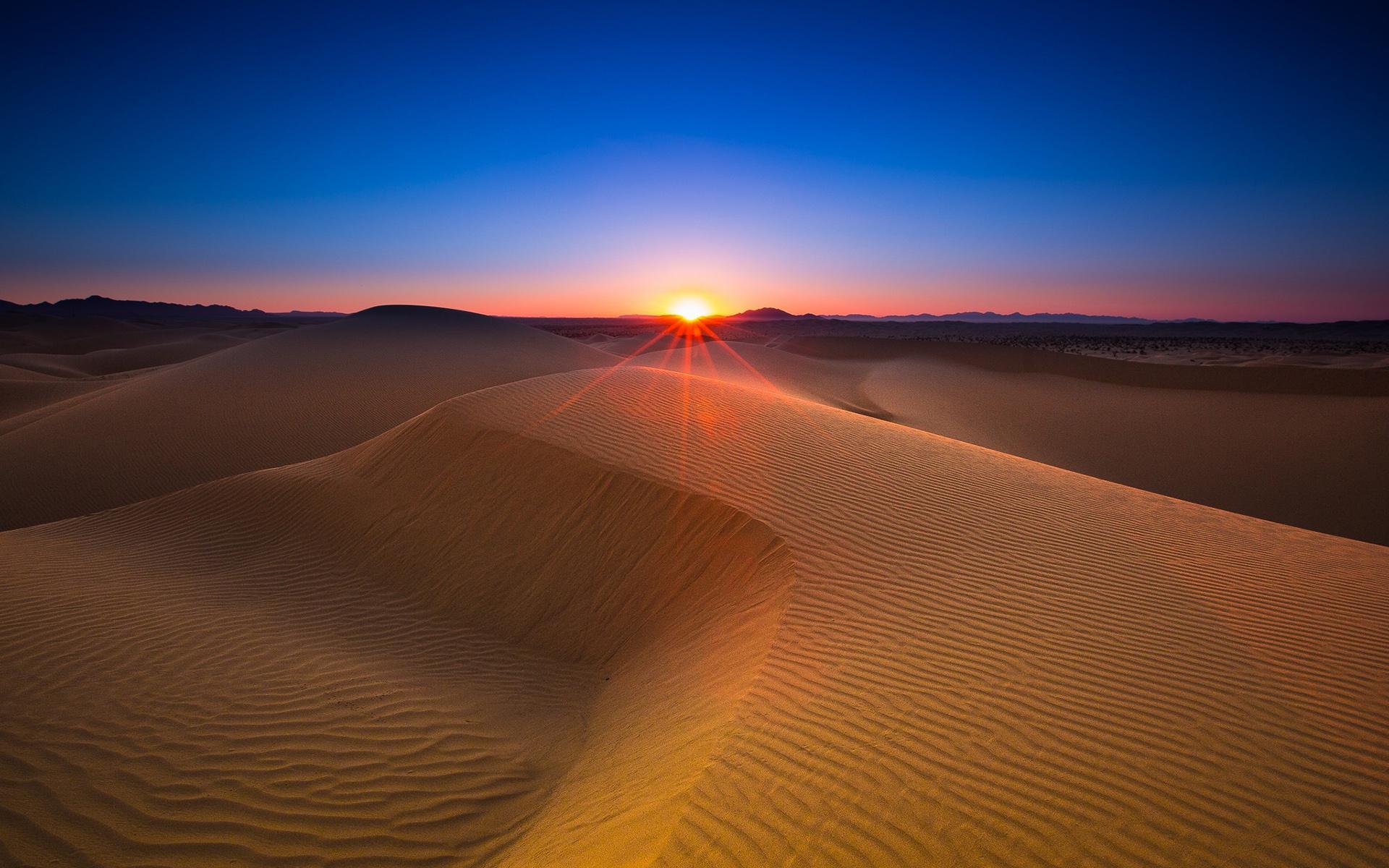 Обои на телефон пустыня закат
