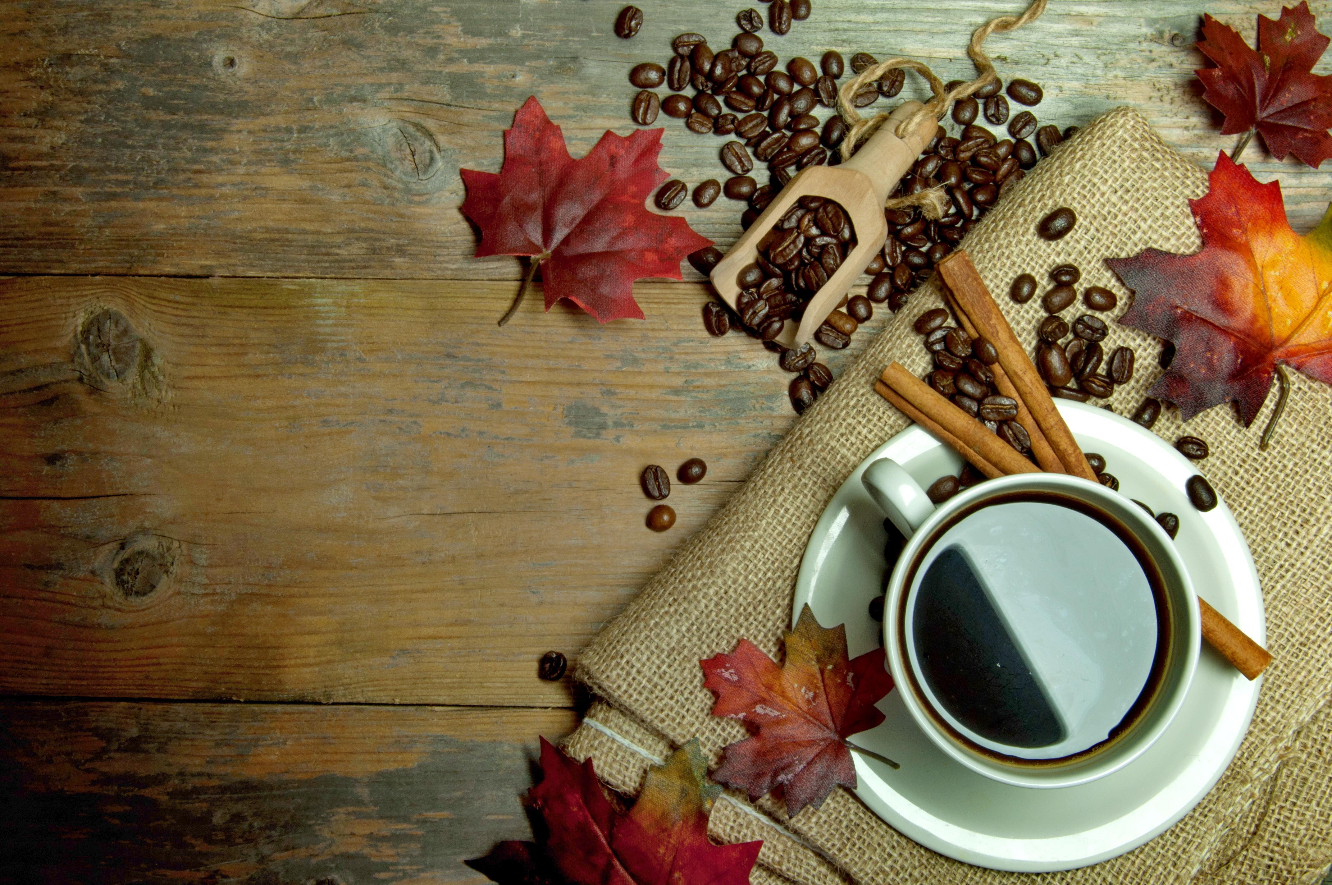 корица кофе чашка cinnamon coffee Cup  № 1119922  скачать