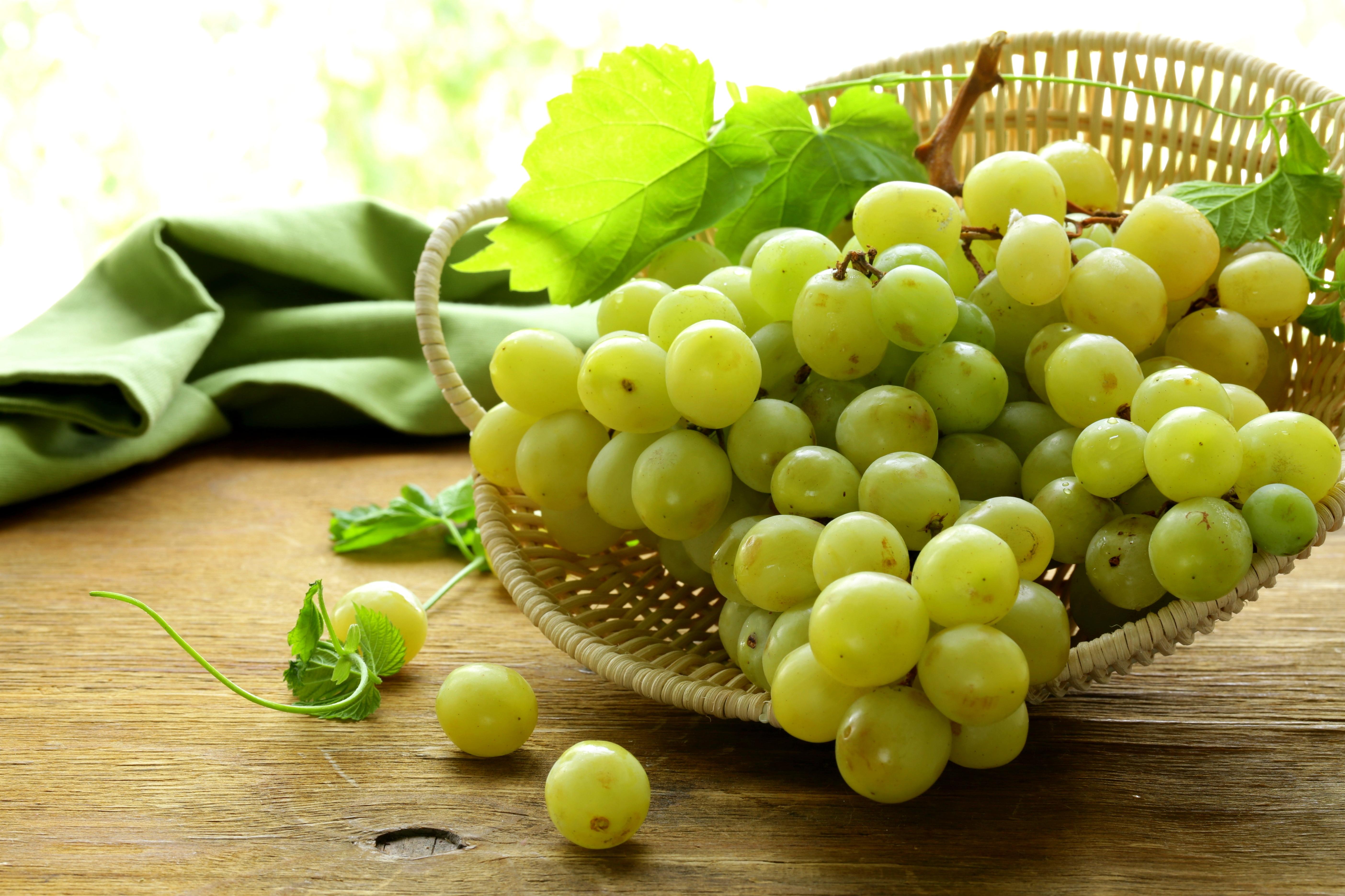 картинки ягод винограда лучшие сборы