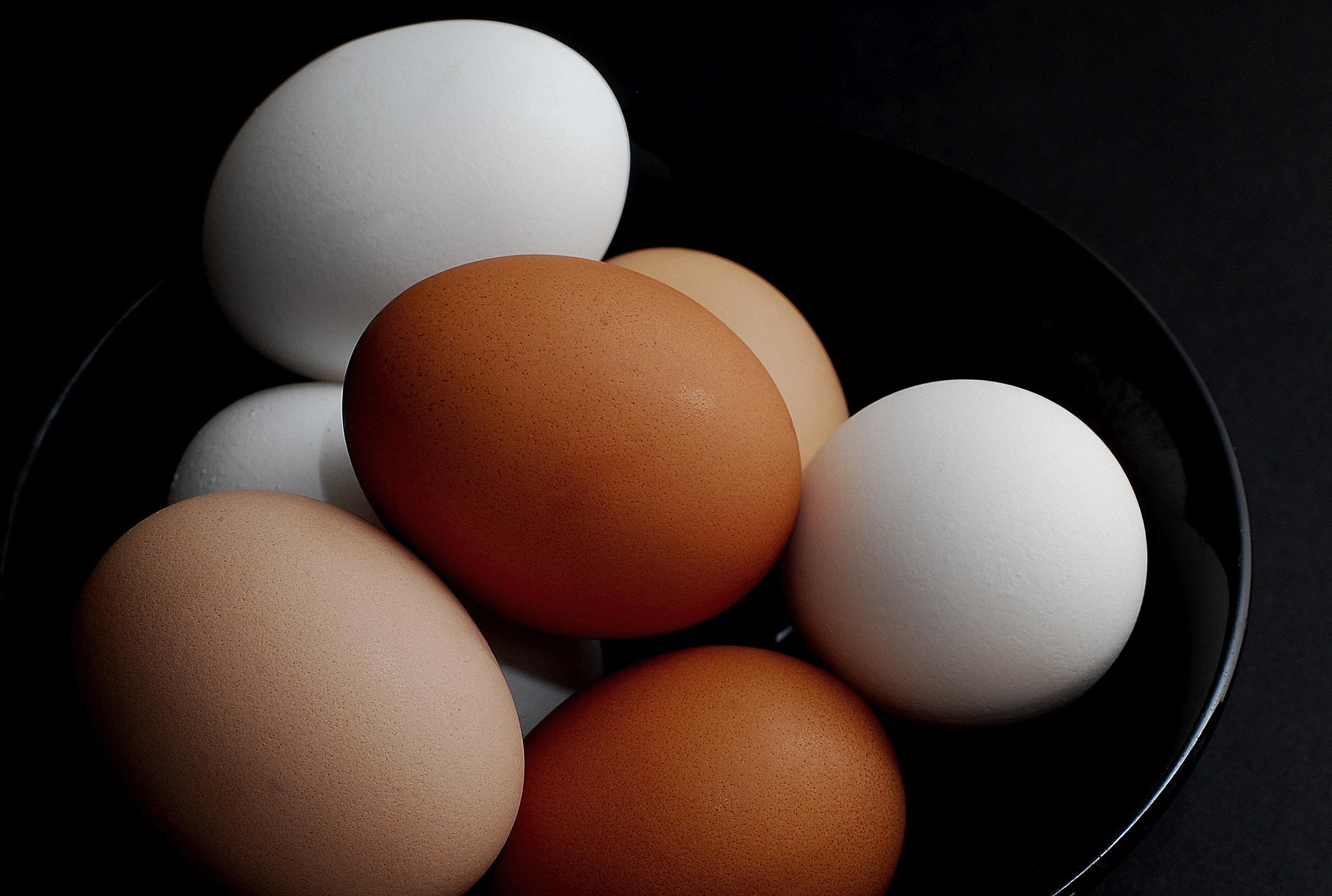 еда яйца графика планеты food eggs graphics planet скачать
