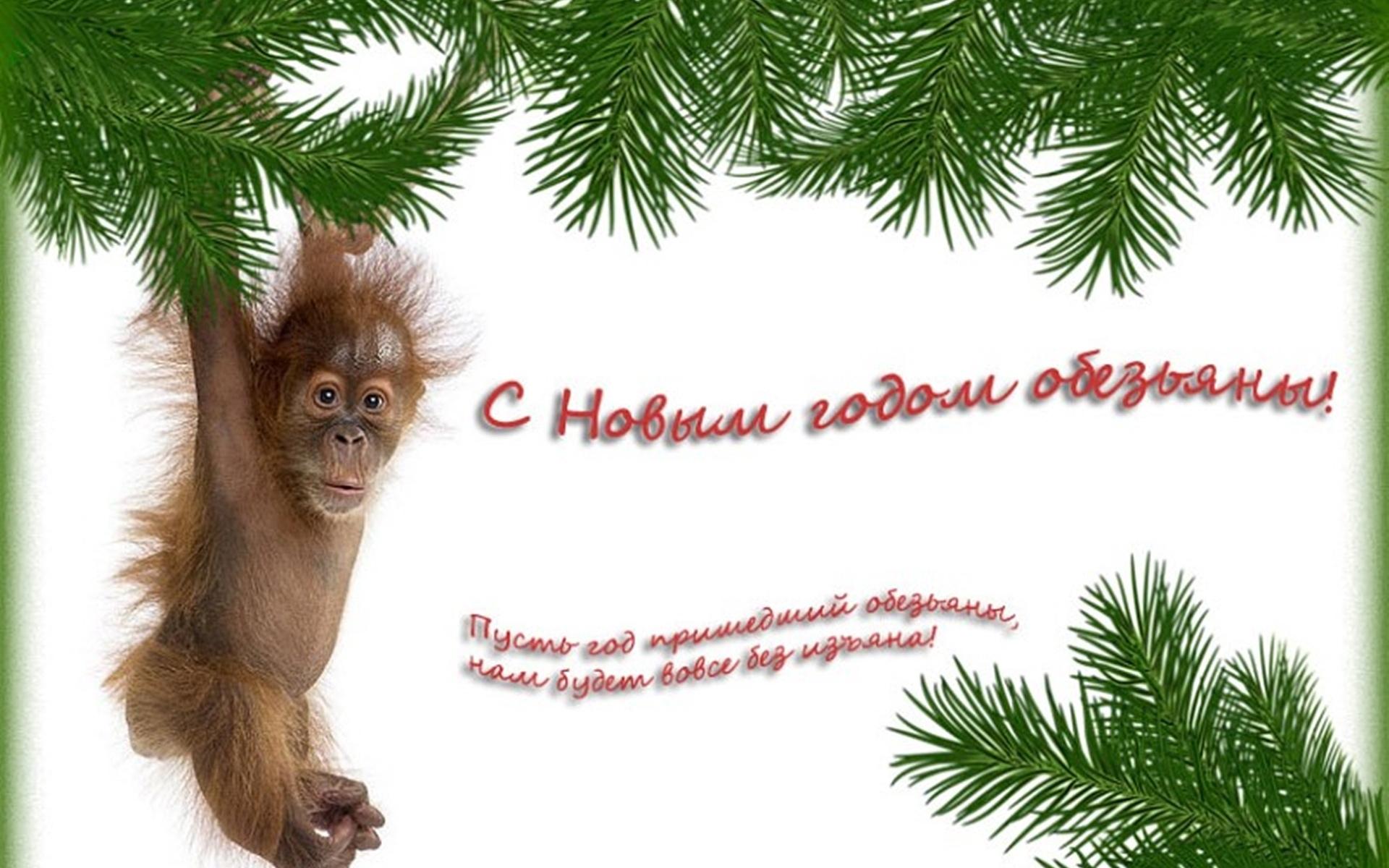 Открытки с новым годом год обезьяны, днем