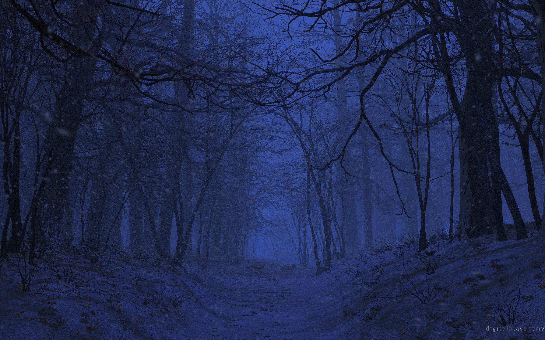 Картинки темный лес ночью
