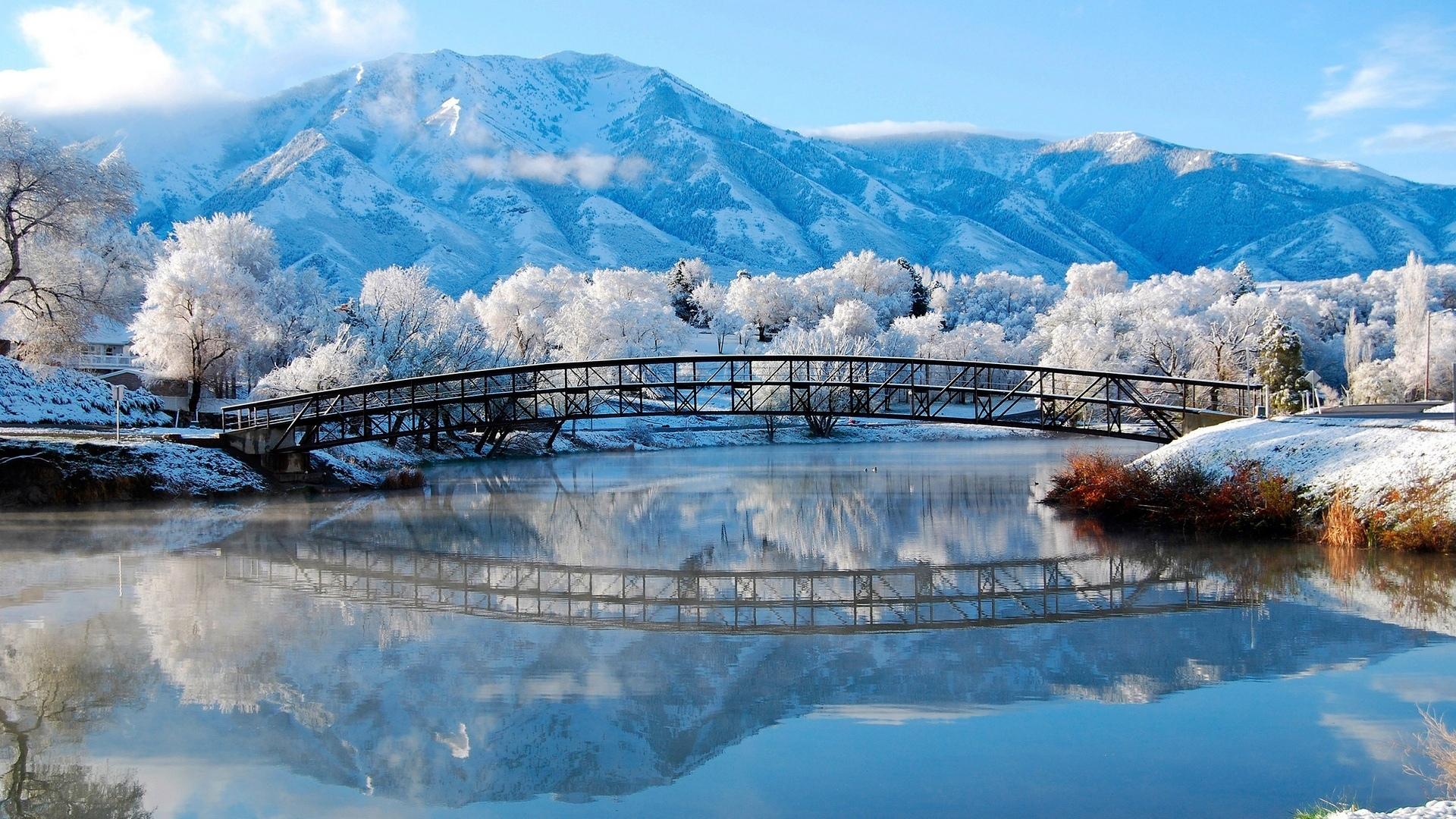снег плантация snow plantation  № 443663 бесплатно