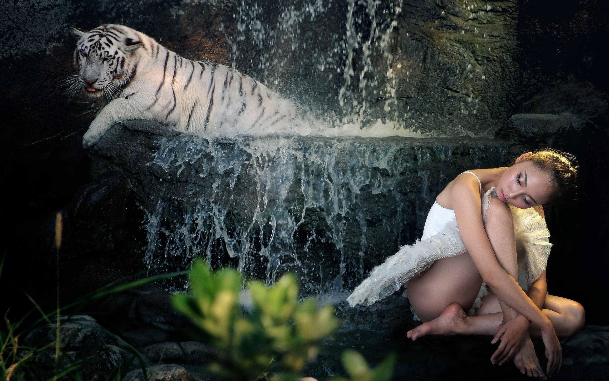 животные девушка тигр фэнтези бесплатно