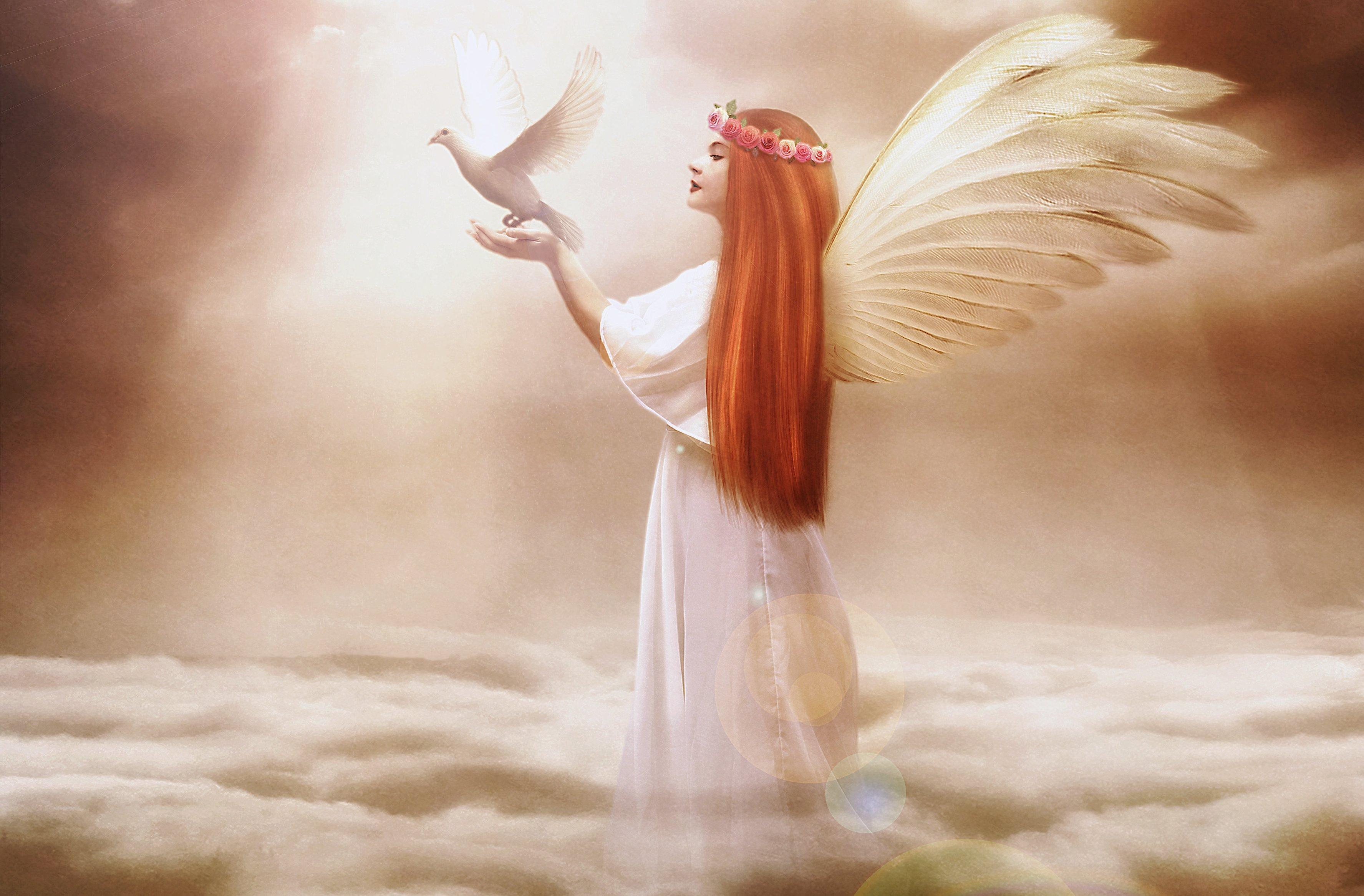 Ангелы в небе загрузить