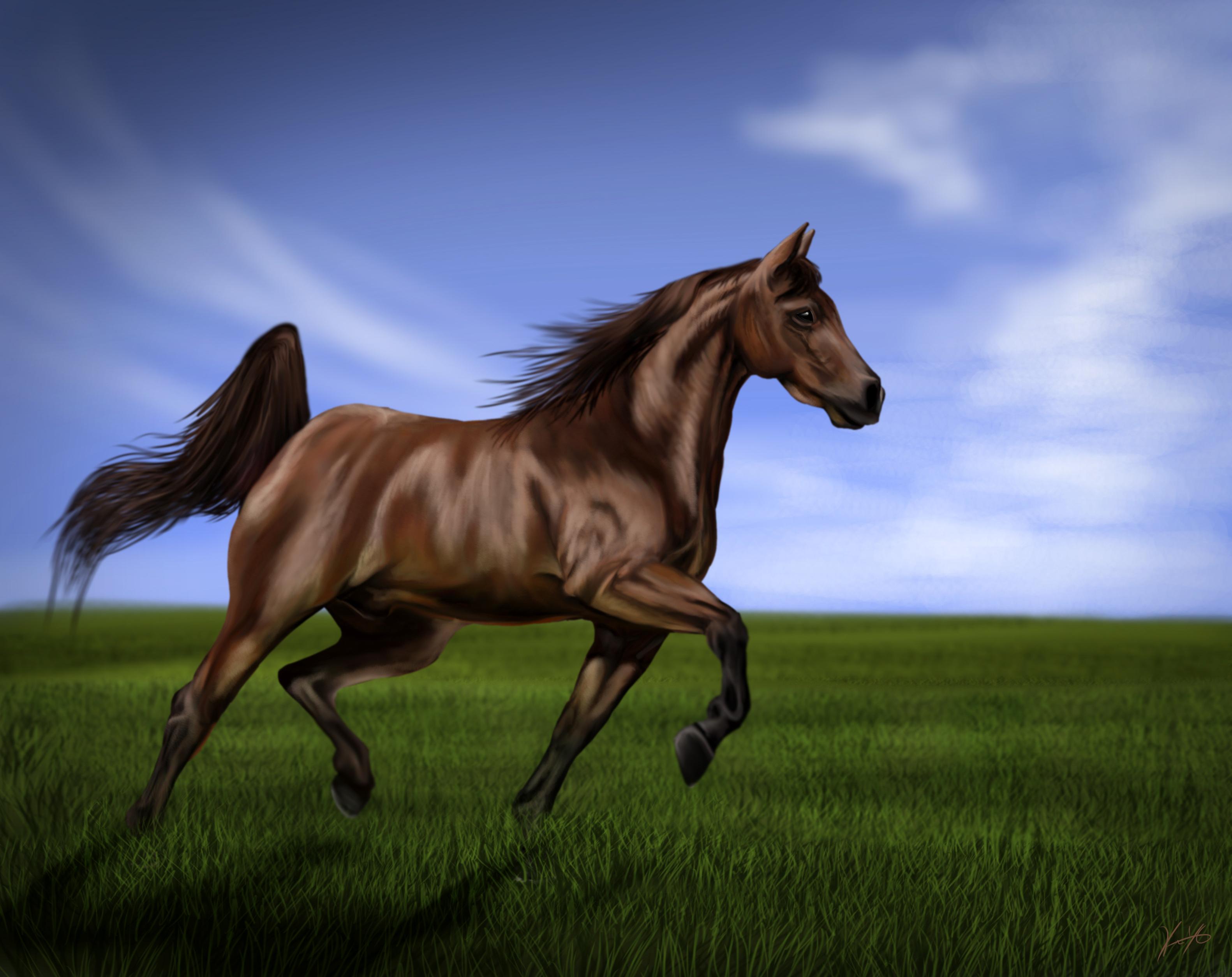 рисунок графика лошадь природа животные figure graphics horse nature animals  № 3925652 без смс