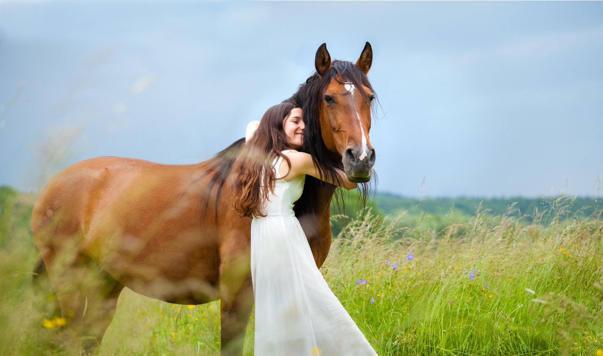 с коне девушка