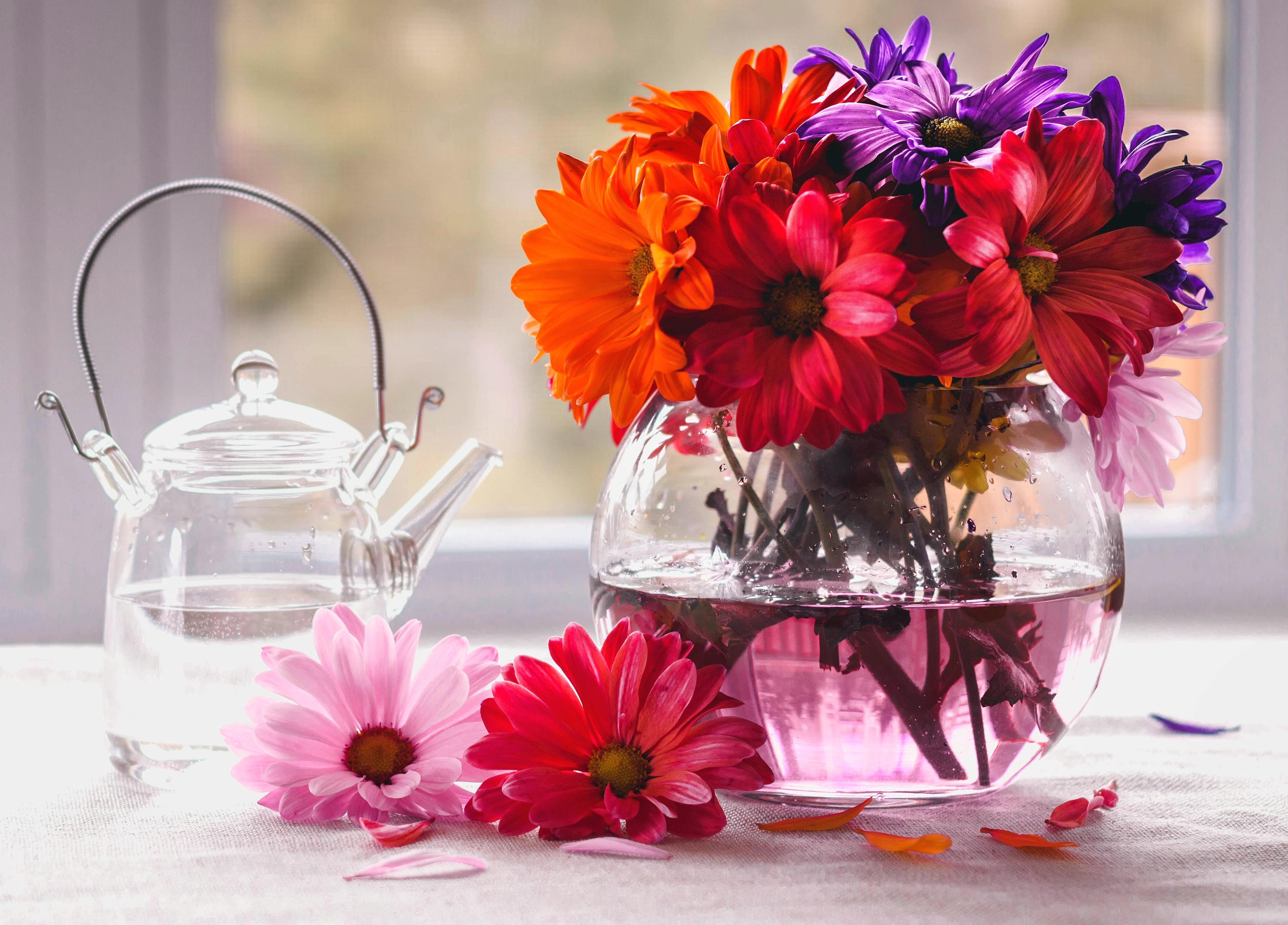 Февраля, красивые картинки с вазами цветов