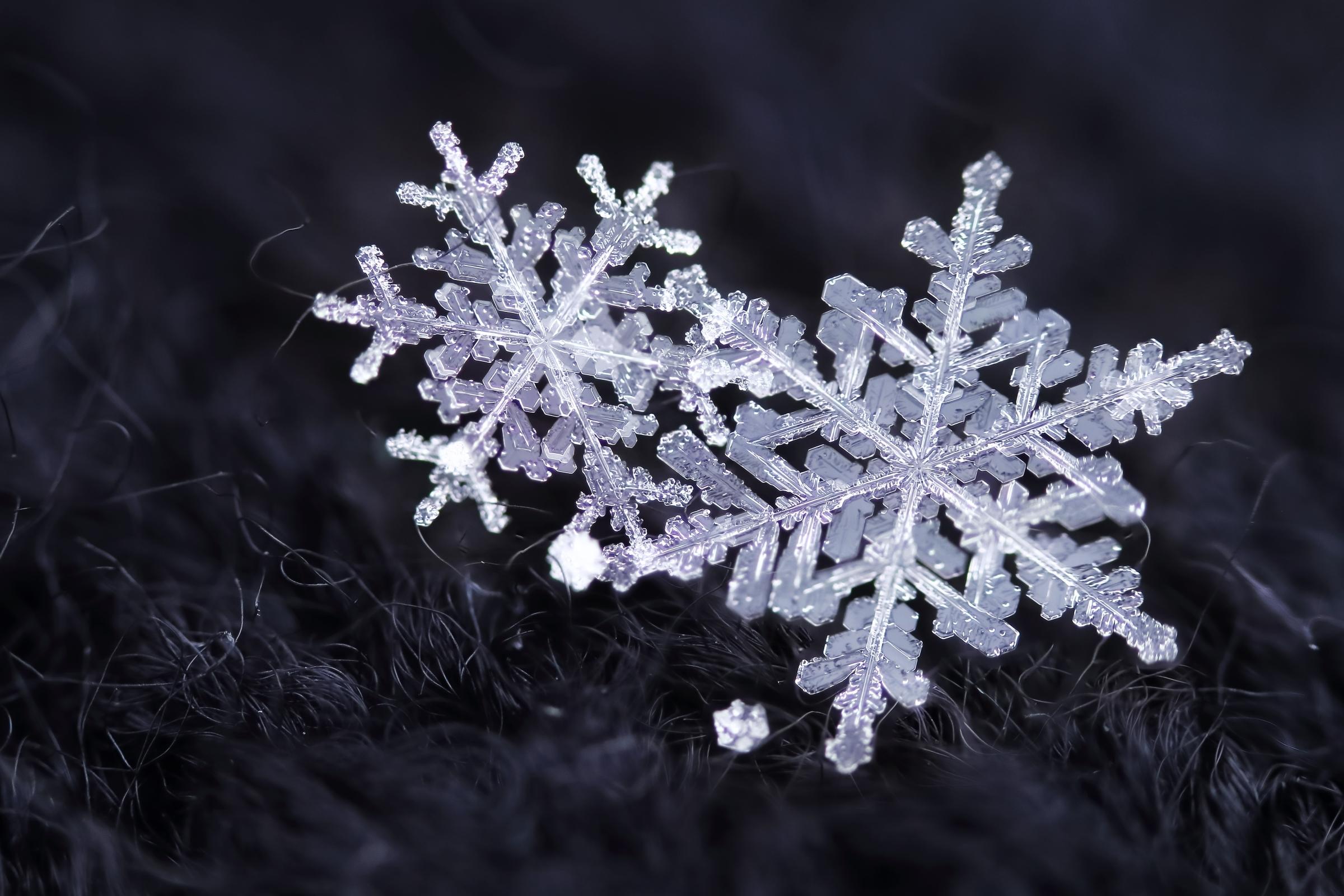 Новогодние картинки снежинки для вырезки на окна распечатать вариант подойдет
