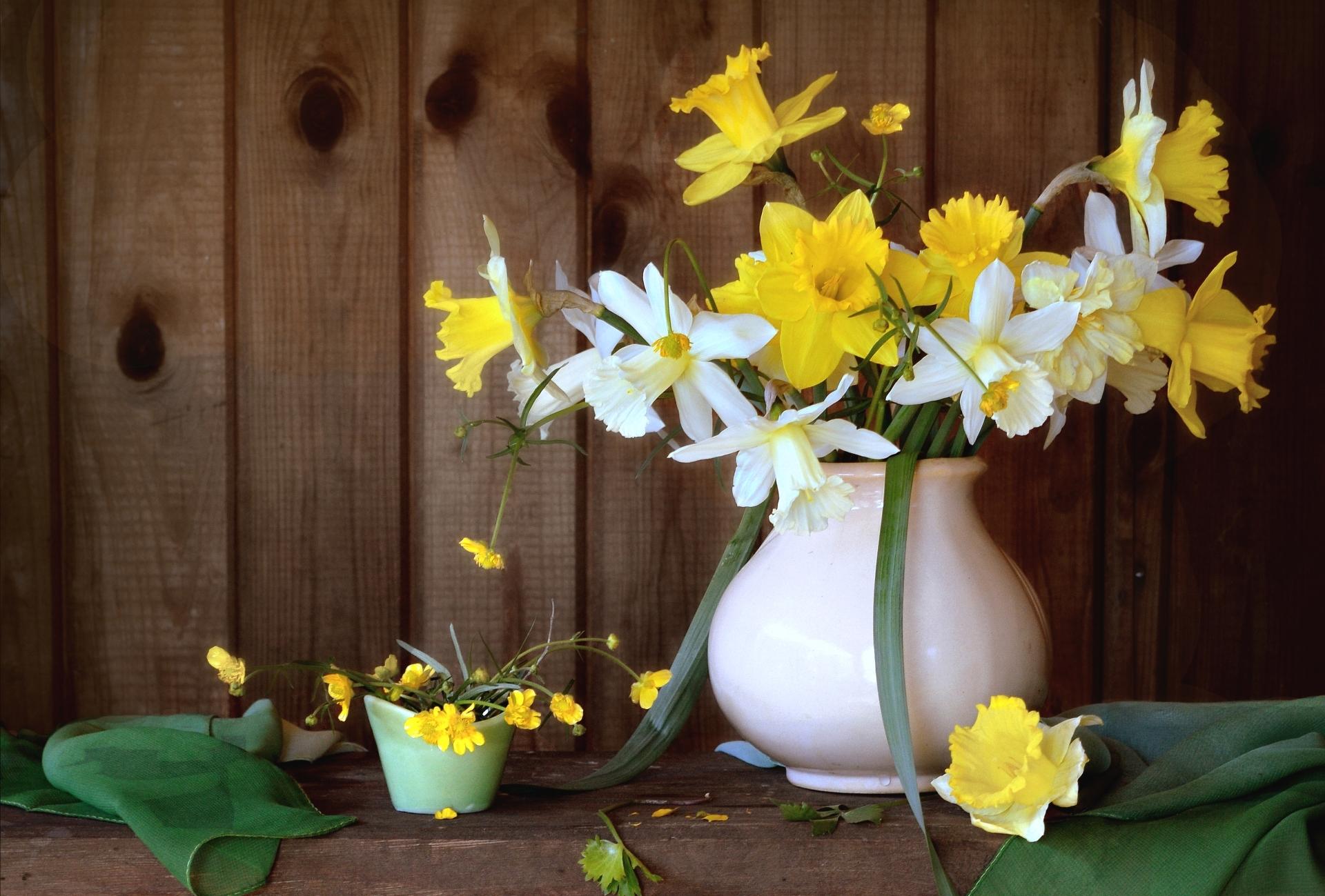 картинки цветы нарциссы букеты курсе самых последних