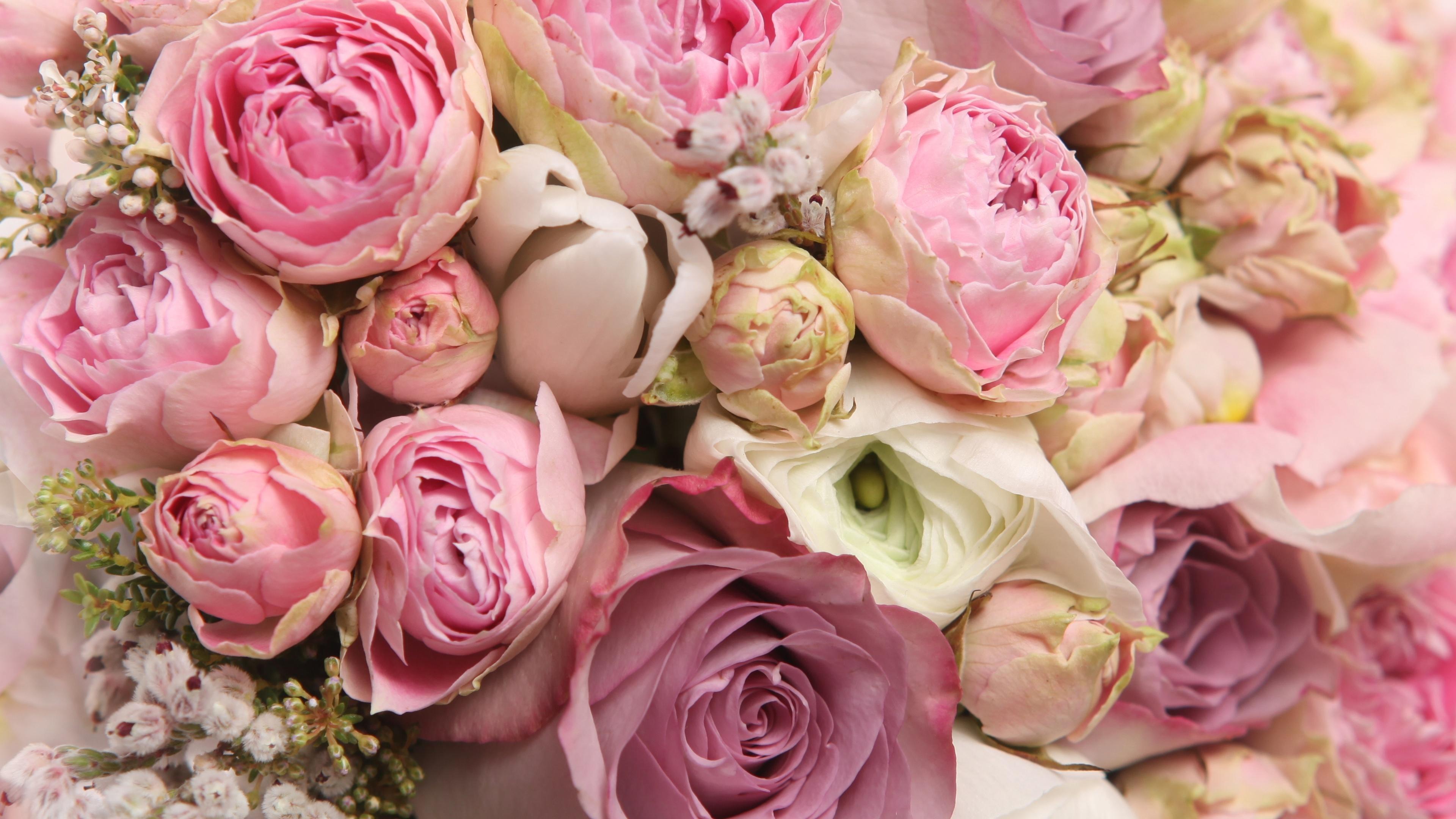 Пионы и розы открытки с днем рождения, открытка картинка