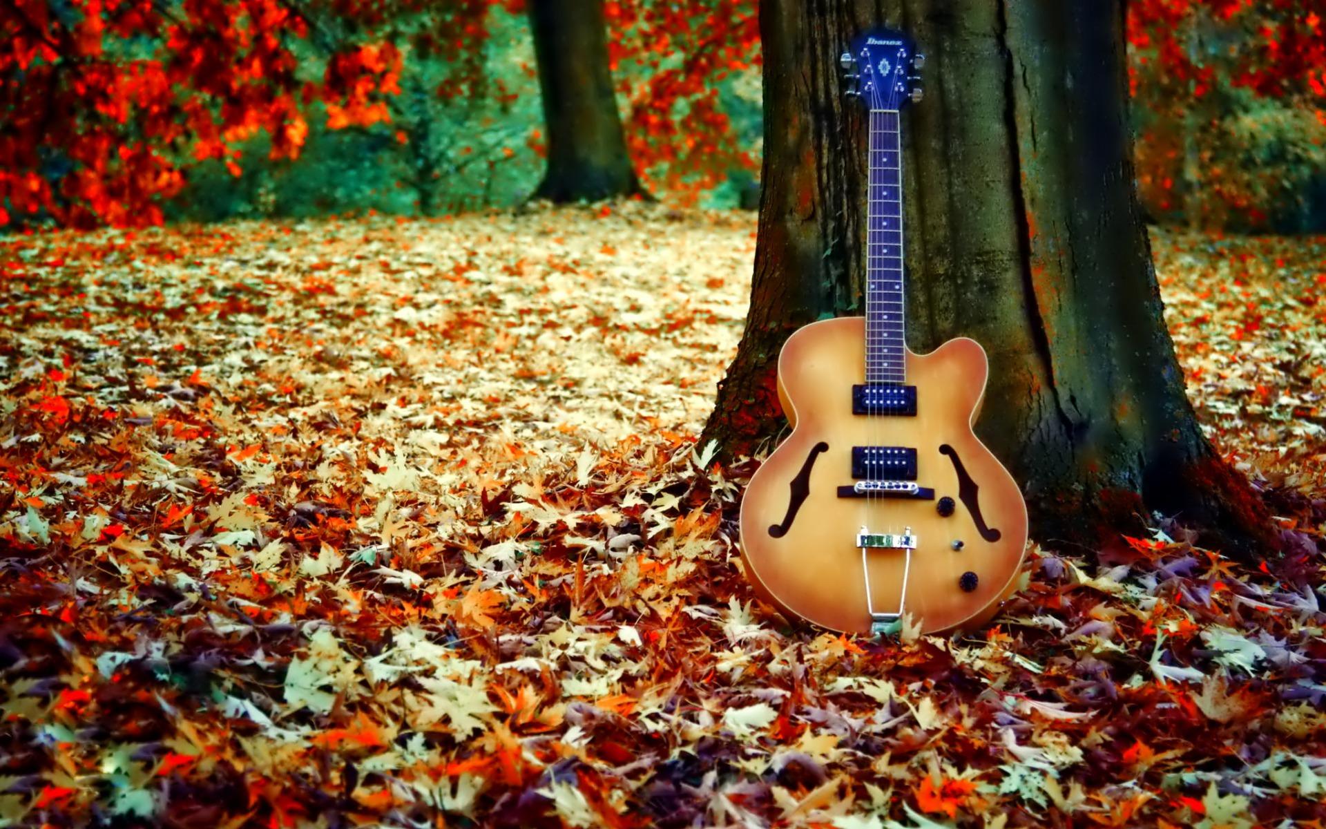 саратове гитара и осенние листья картинки весной невероятно