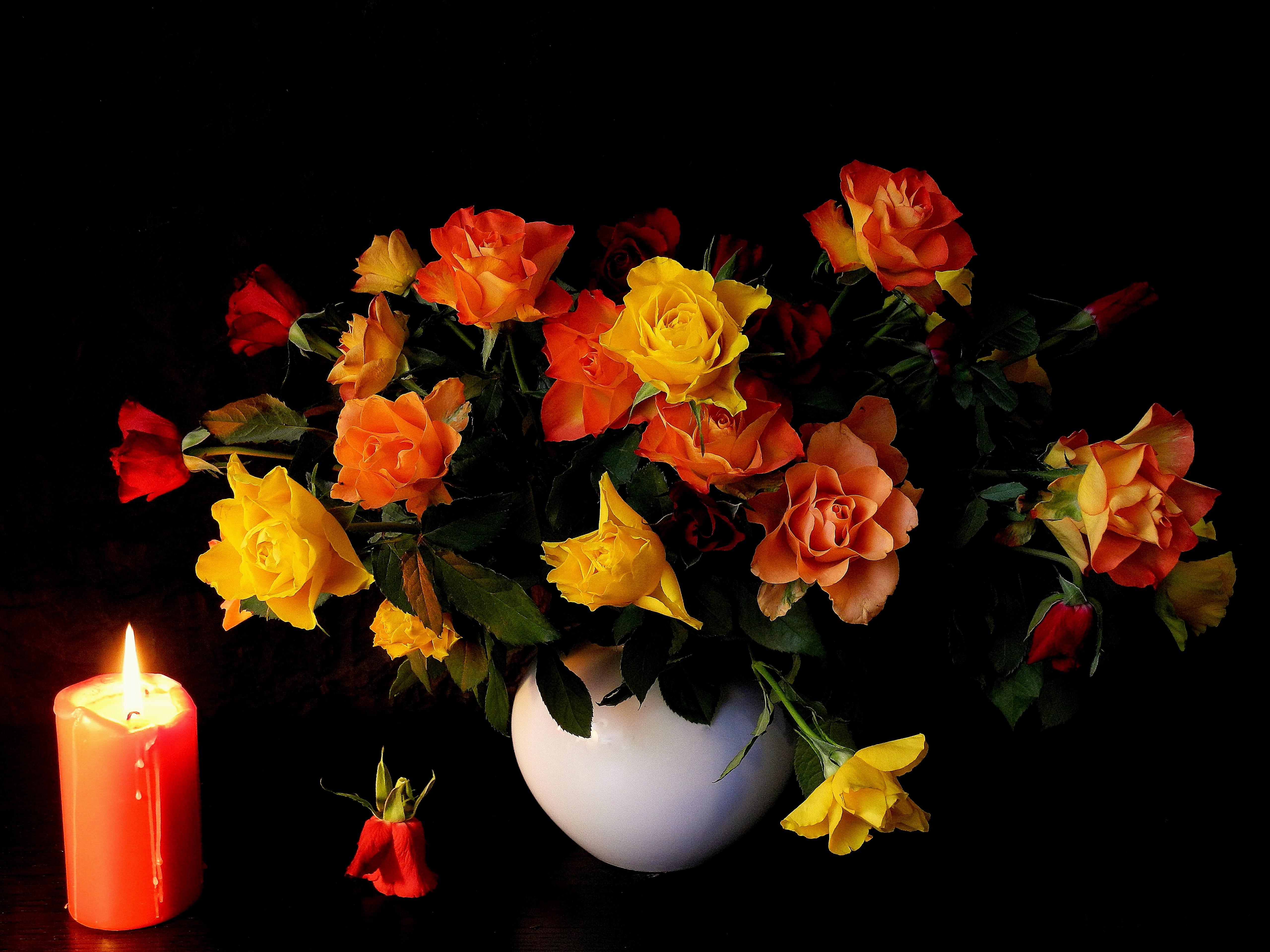 спорят добрый вечер картинки букет роз окрашивания один тон