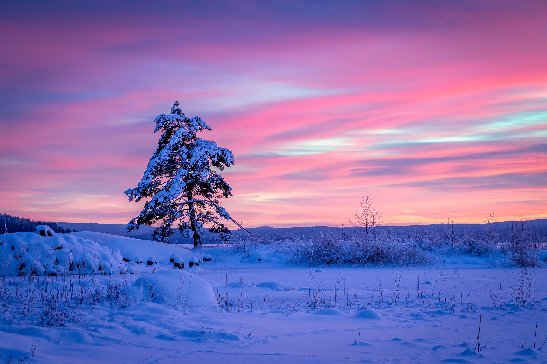 закаты зимой картинки отобрал самый