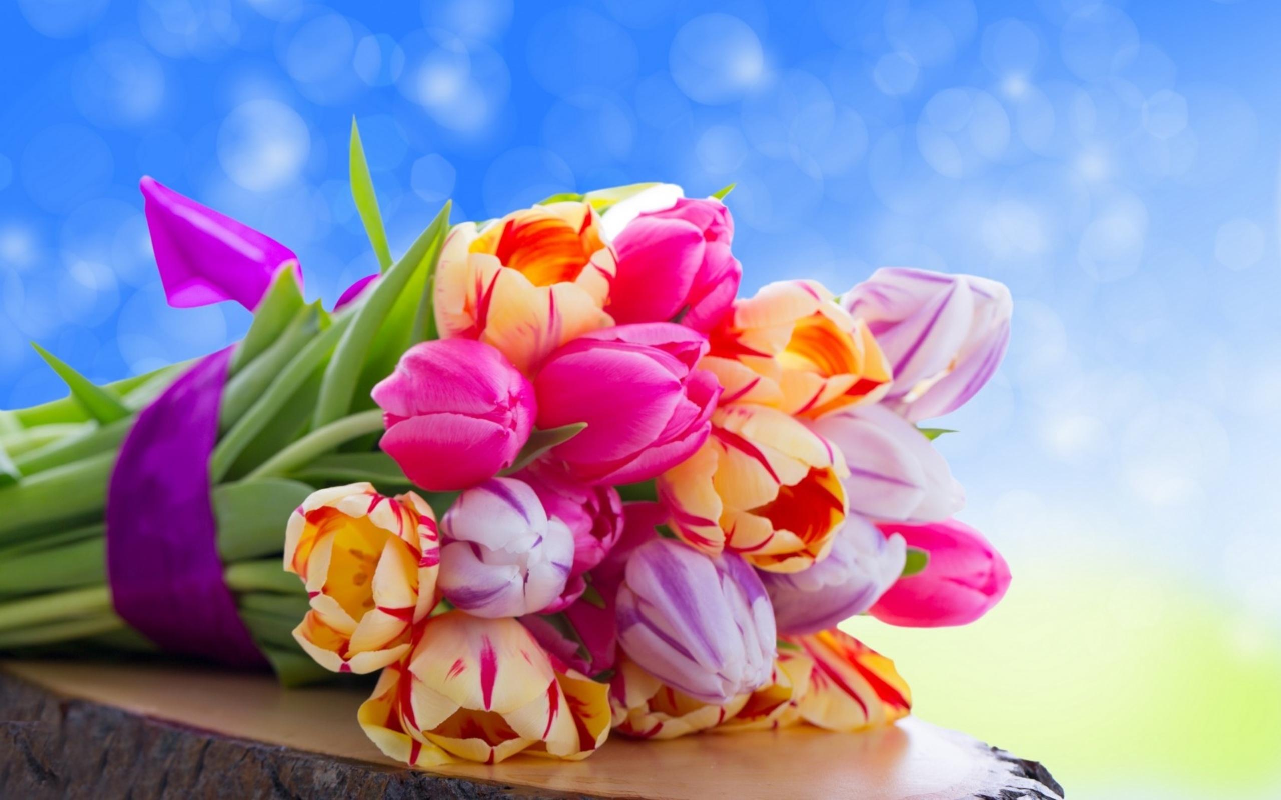 Открытка праздничные цветы, картинках попугайчиков