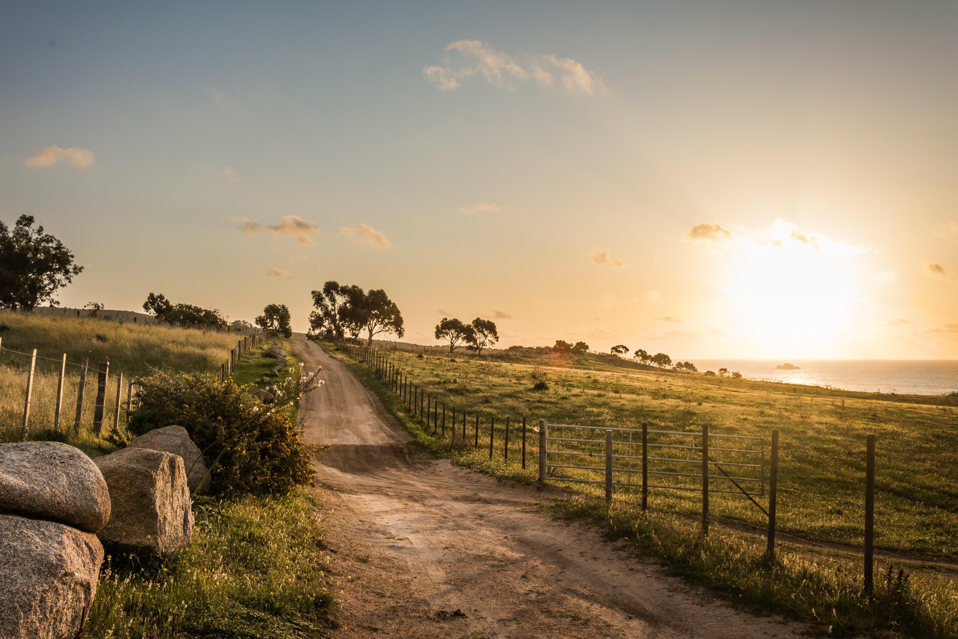 Дорога поле забор солнце бесплатно