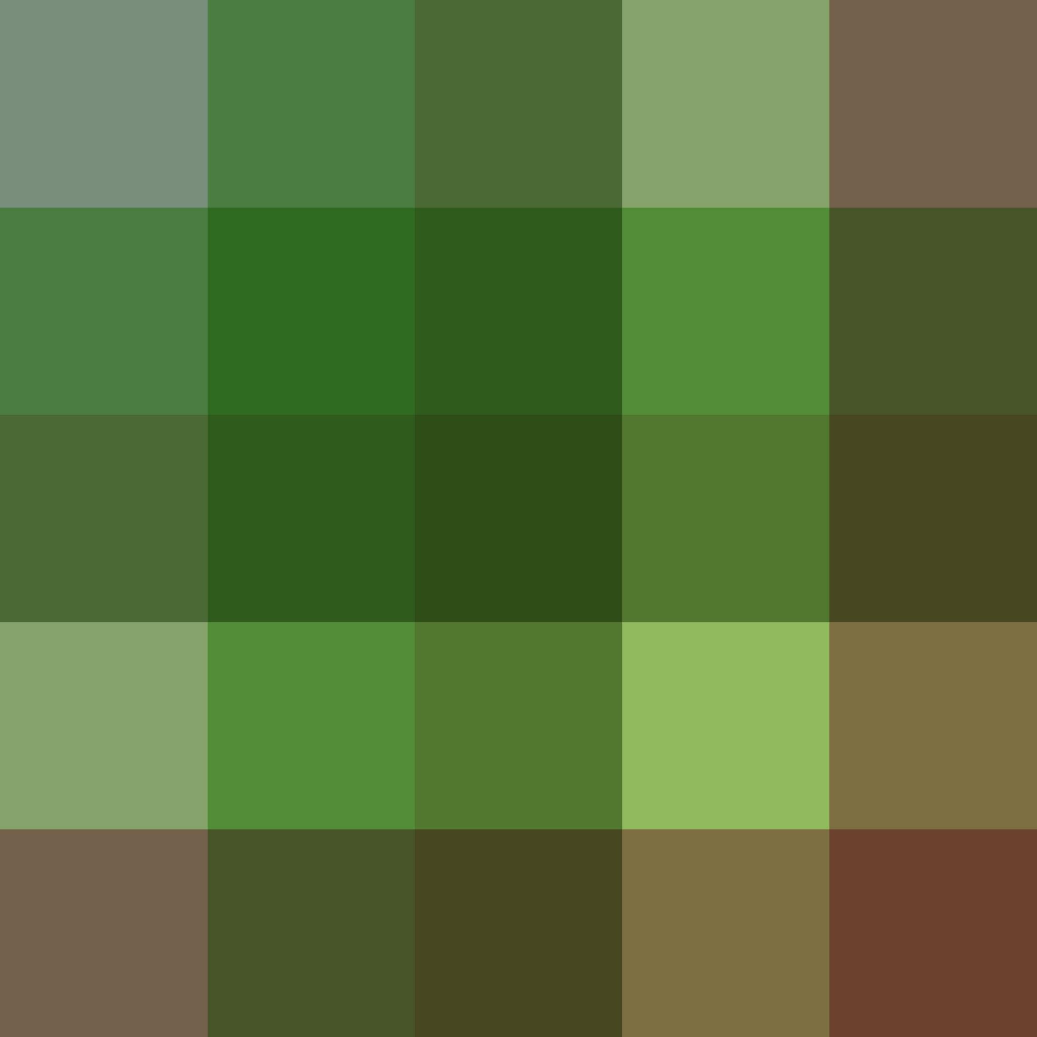 картинки в зеленом и коричневом цвете работу над