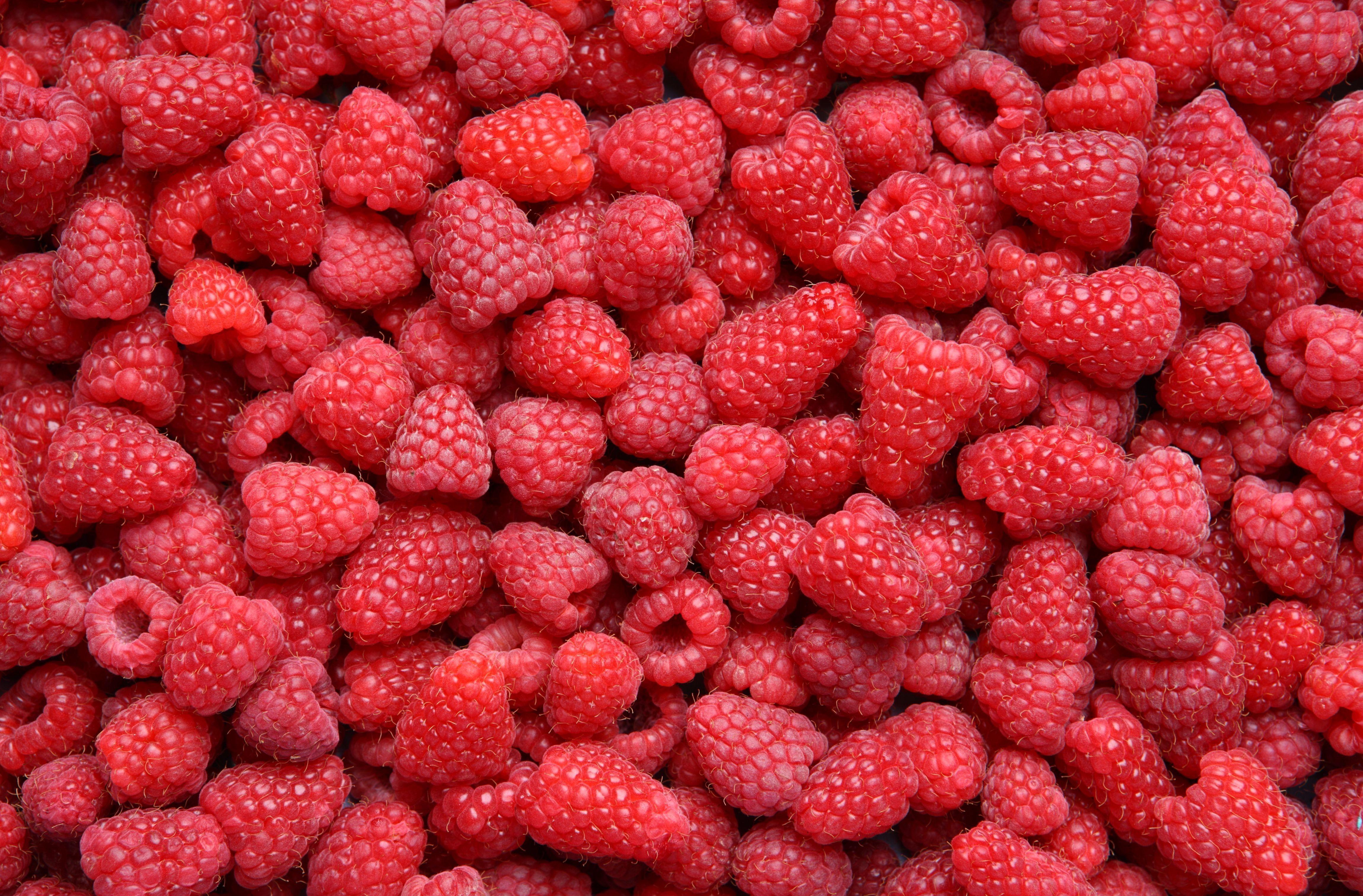 еда малина ягоды  № 2884504 без смс