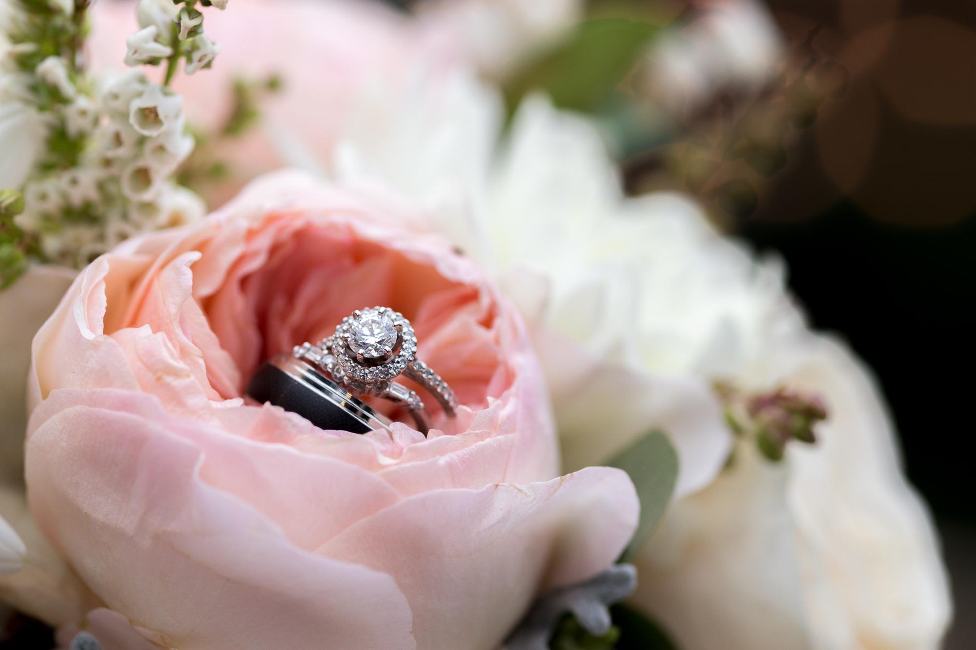 Картинка кольцо и роза