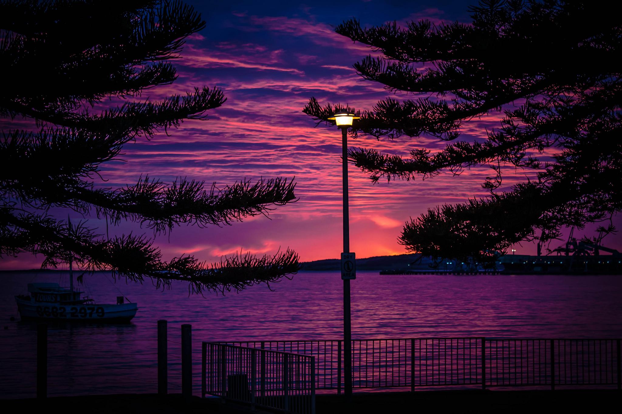 Обои набережная, ночь, австралия, фонари. Города foto 14