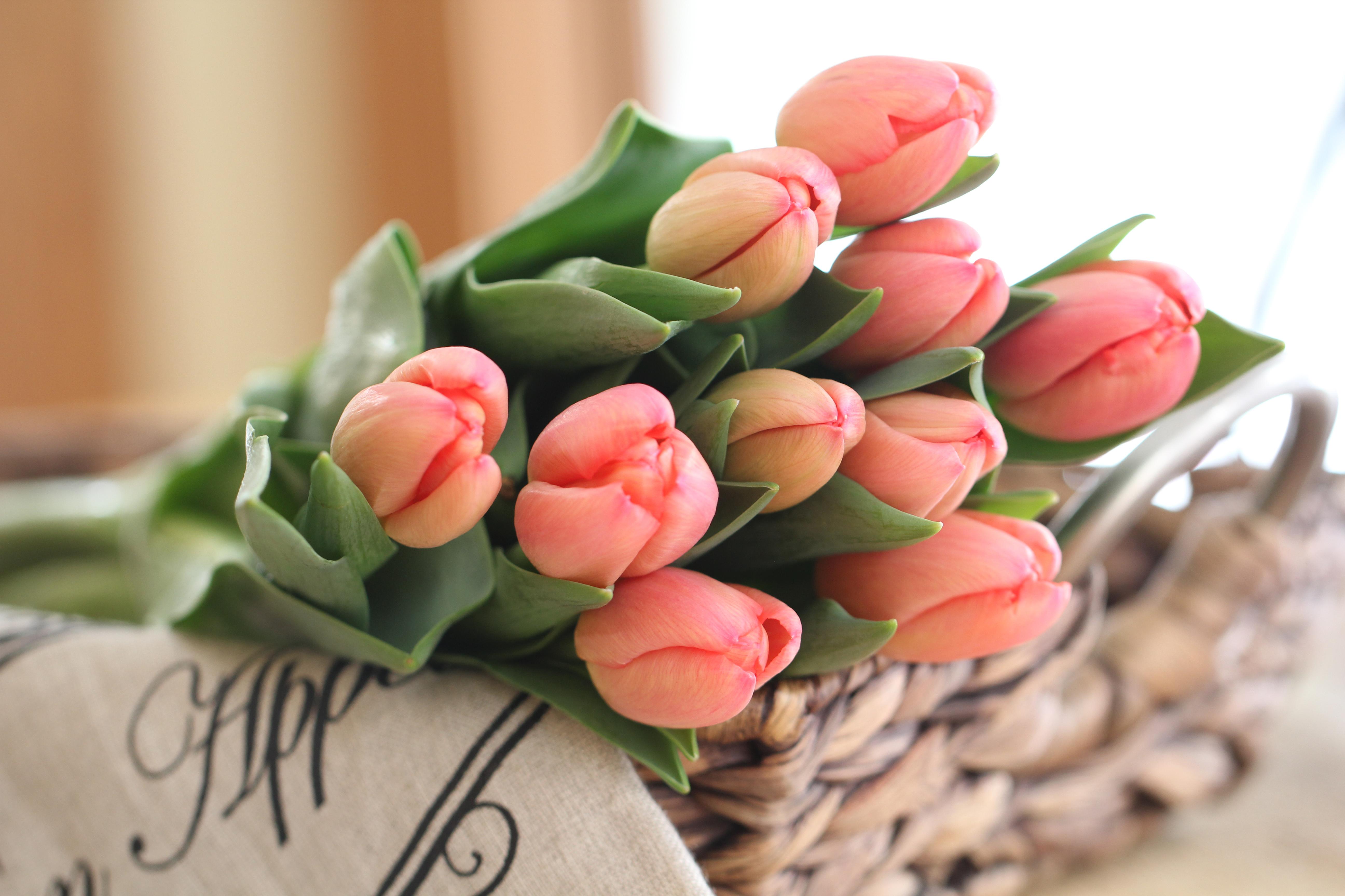 Открытки с тюльпанами с днем рождения стильные, улыбка