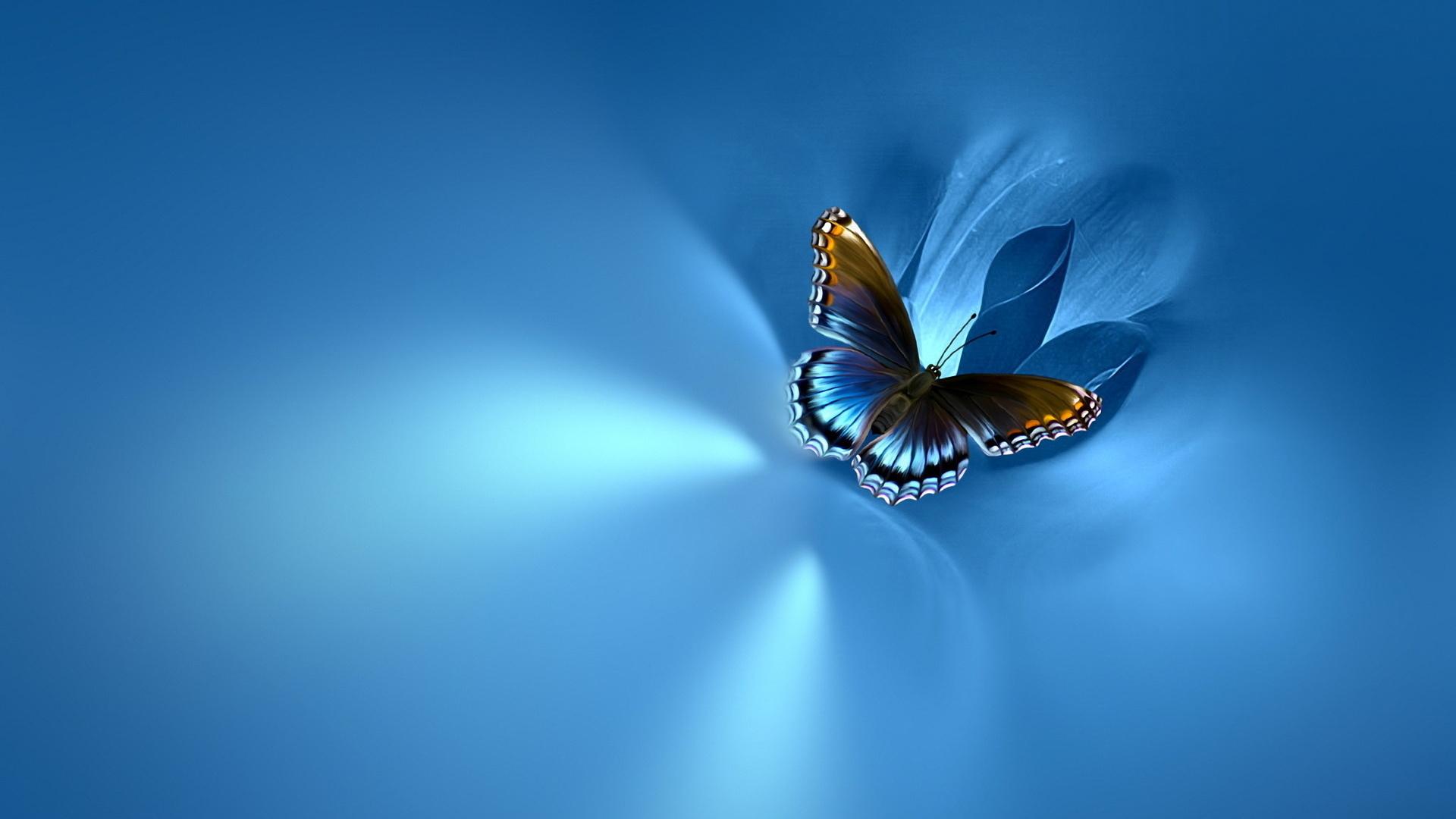 Красавица с бабочкой скачать