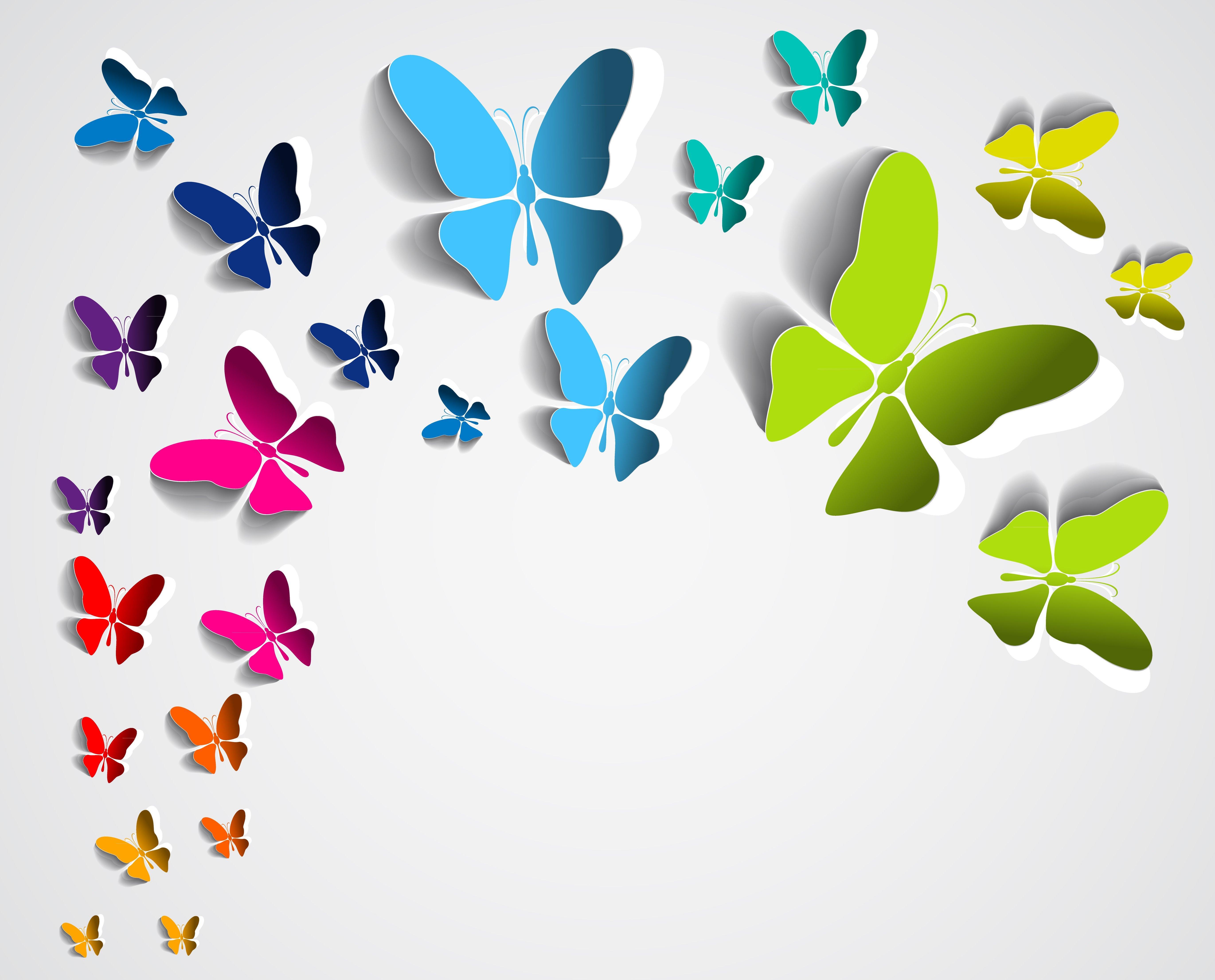 Бабочка картинка для открытки, роса цветах