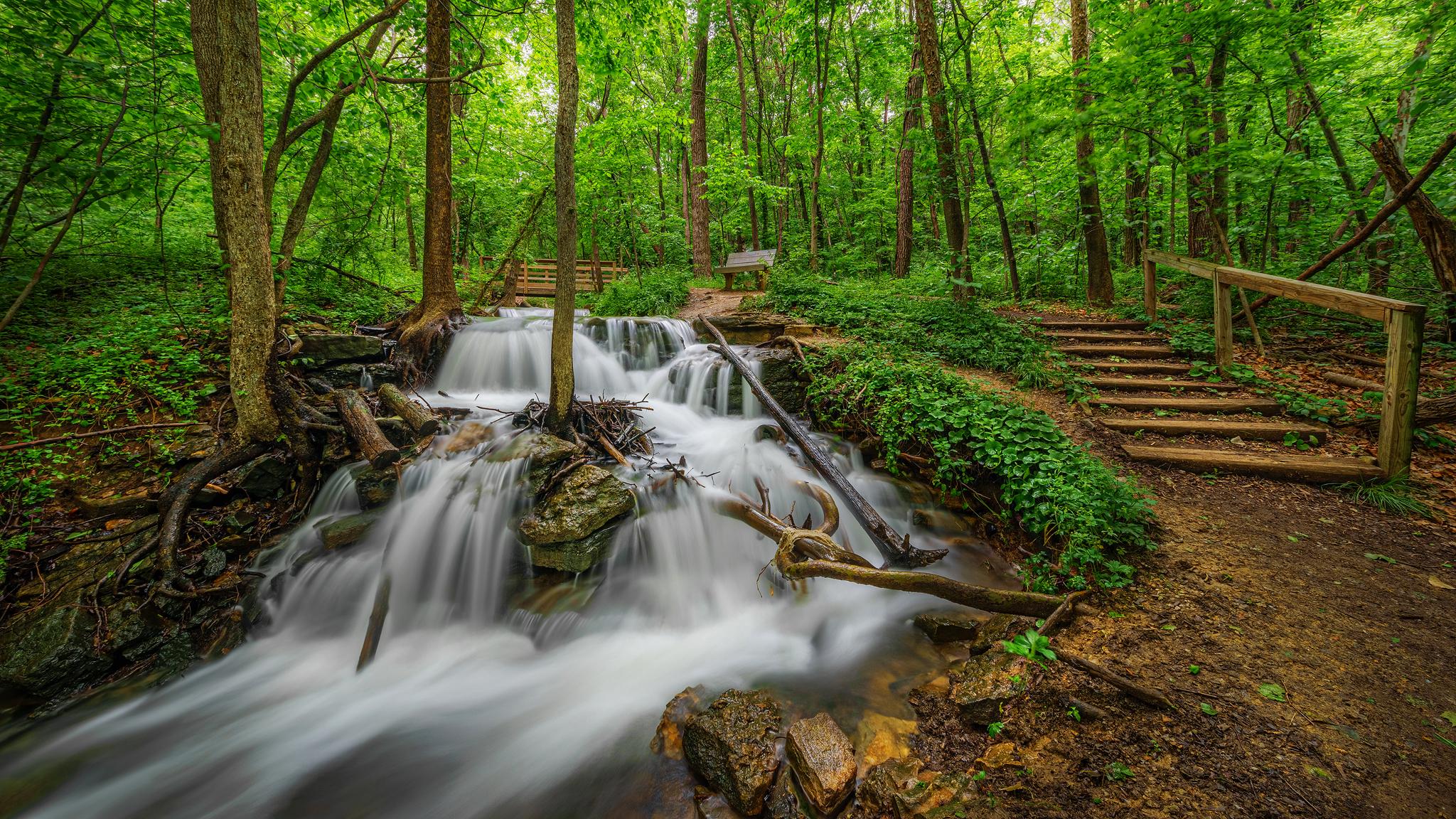 природа река водопад лес деревья nature river waterfall forest trees  № 484120  скачать