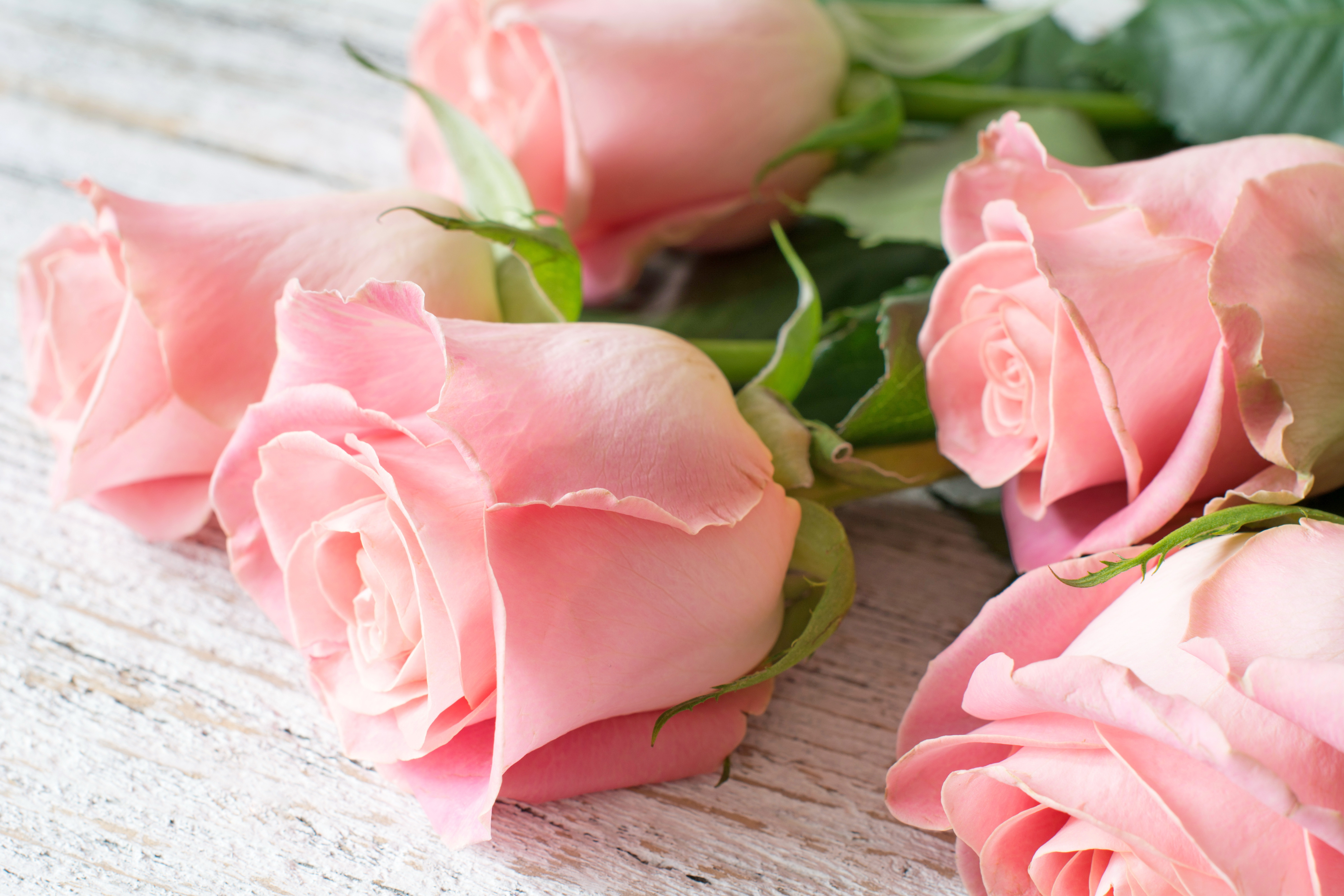 Pictures of pink rose bouquets M: Leegoal 20pcs Artificial Rose Flowers