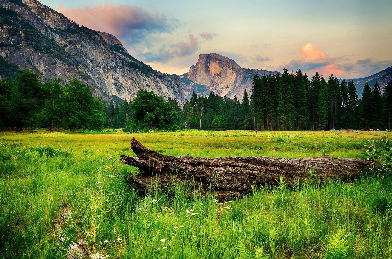 природа горы скалы трава nature mountains rock grass скачать