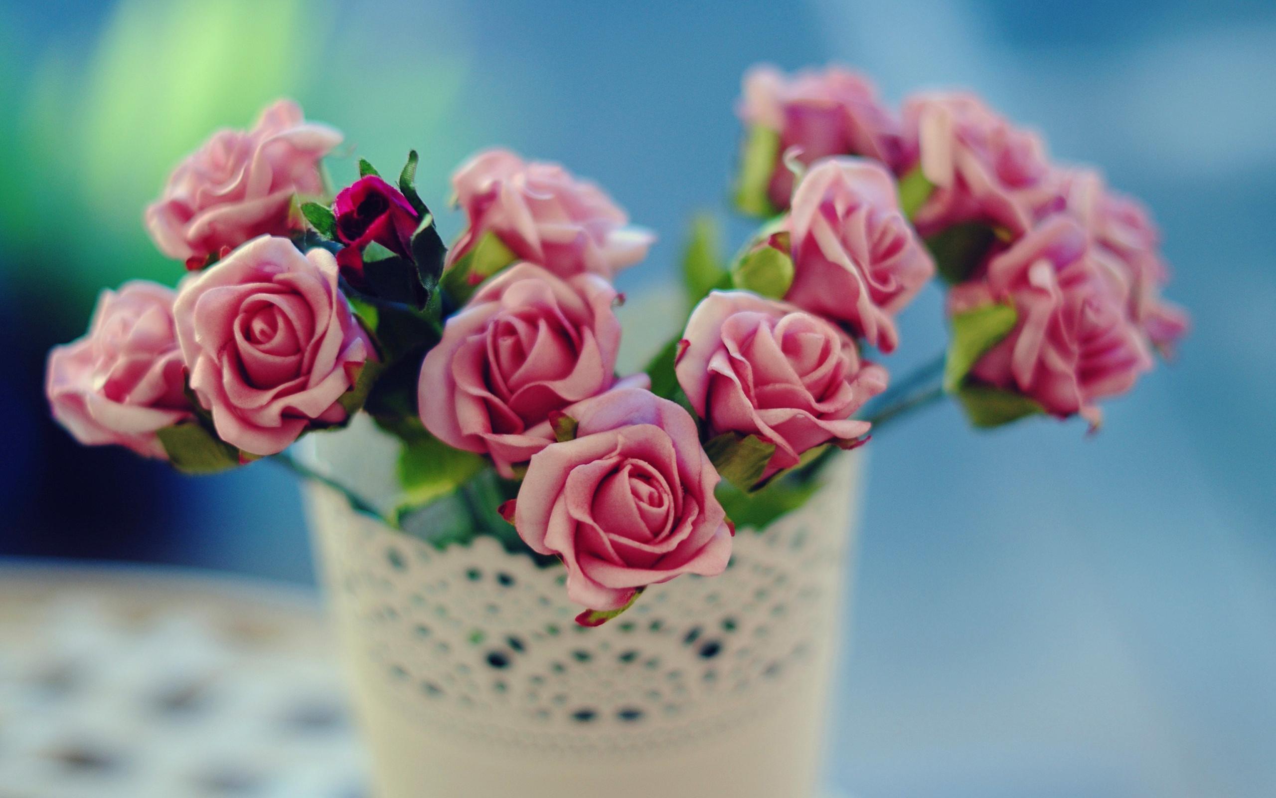 фото нежные милые цветы овощей