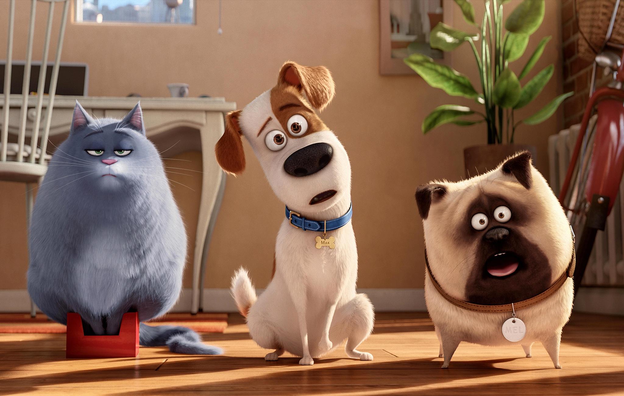 Жизнь домашних животных мультфильм
