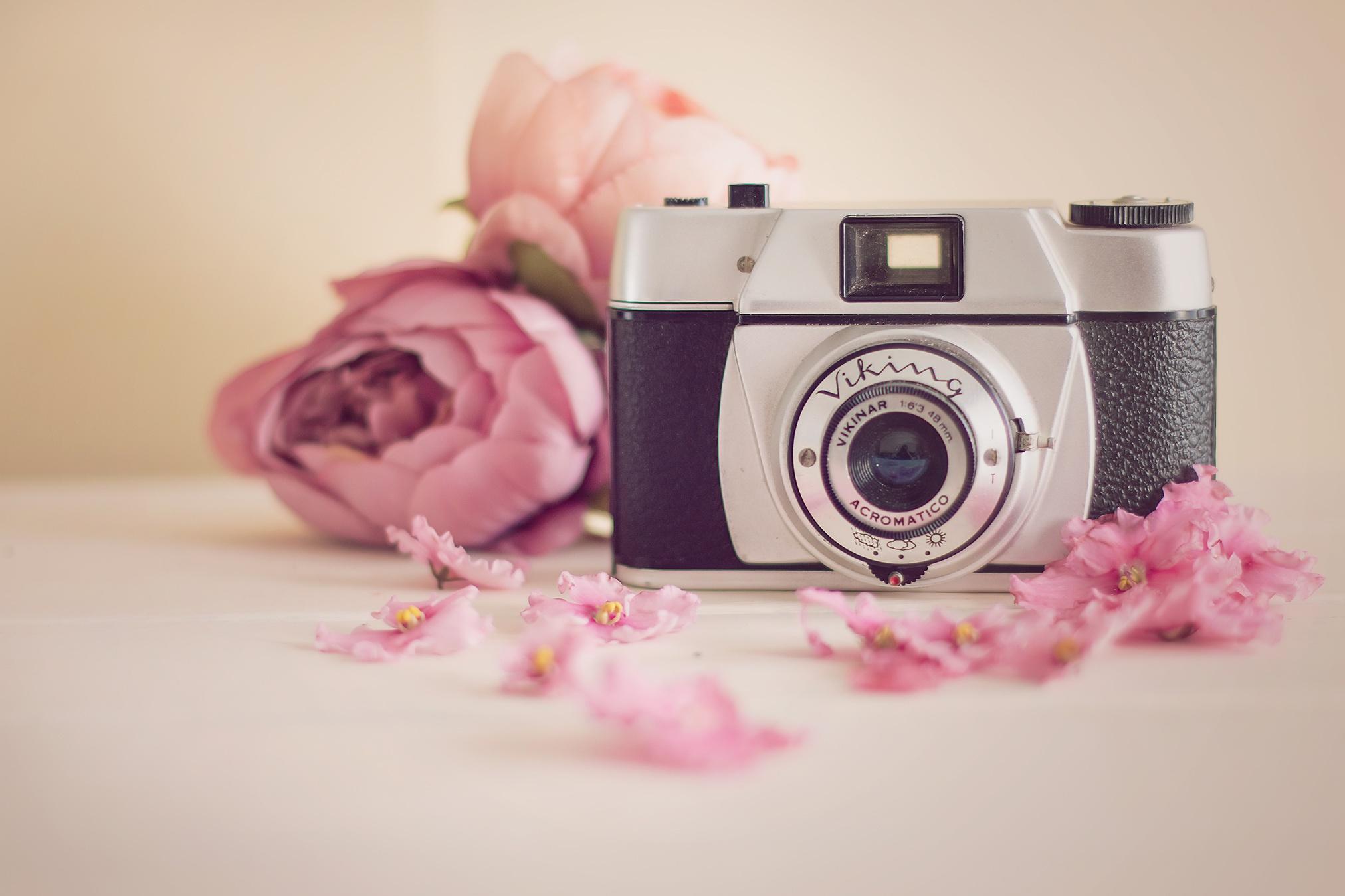 Картинки фотоаппаратов красивые, приветик