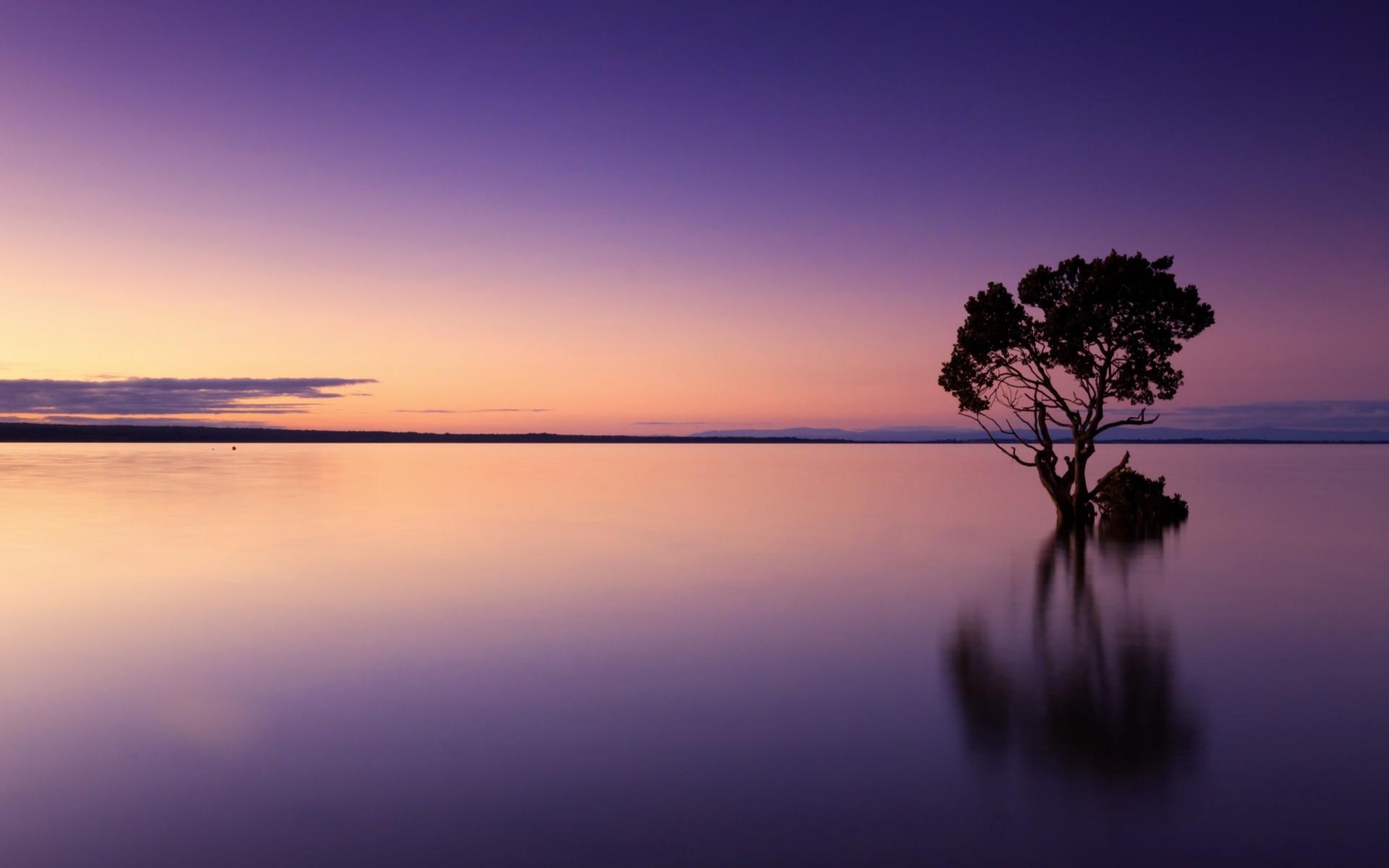природа солнце озеро отражение деревья без смс