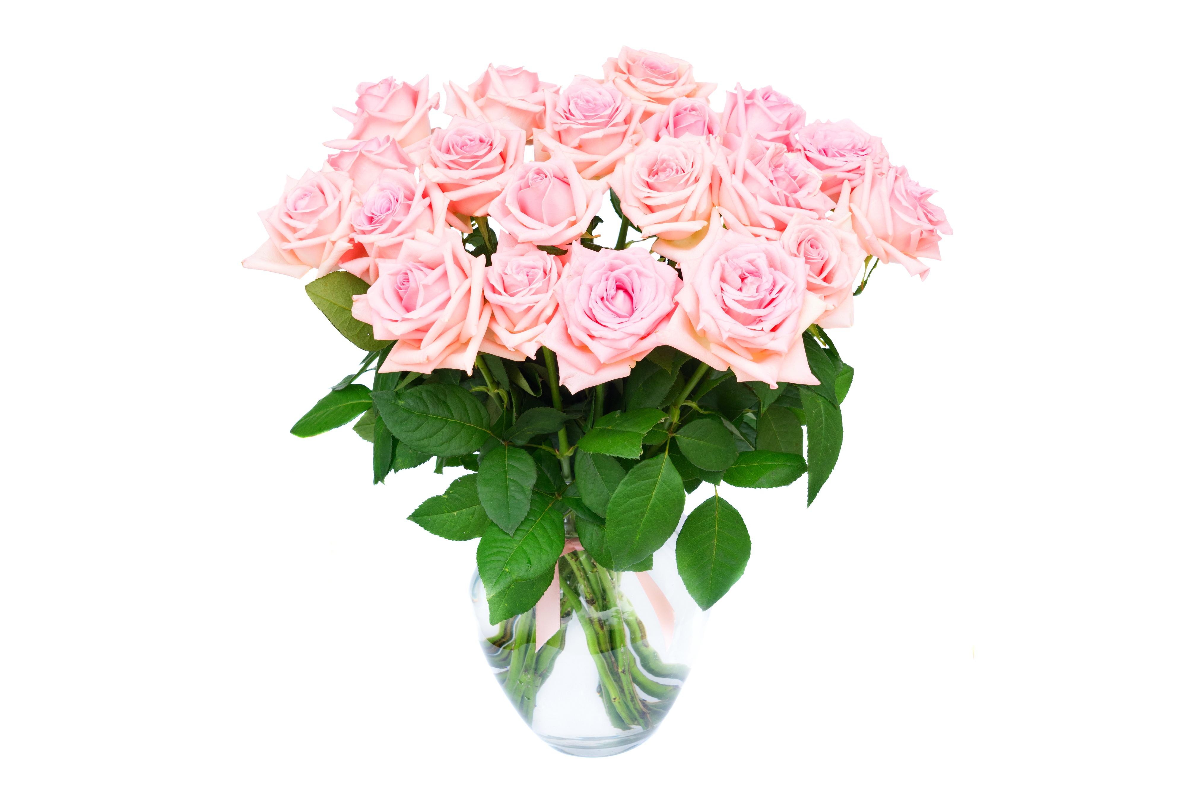 Цветы картинки букеты розовые розы