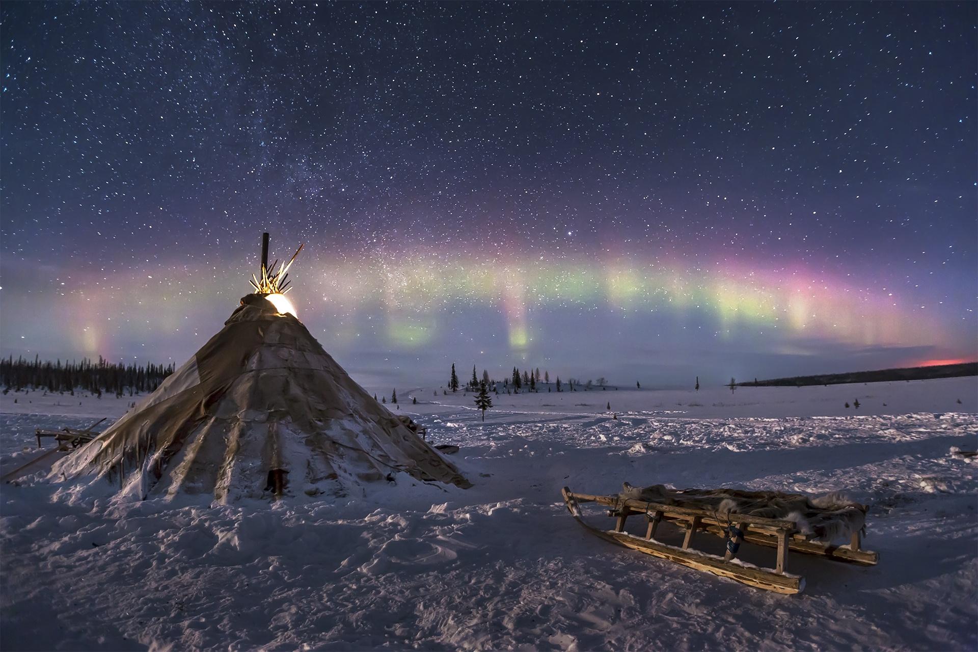 такого типа тундра зимой фото отличаются повышенным уровнем
