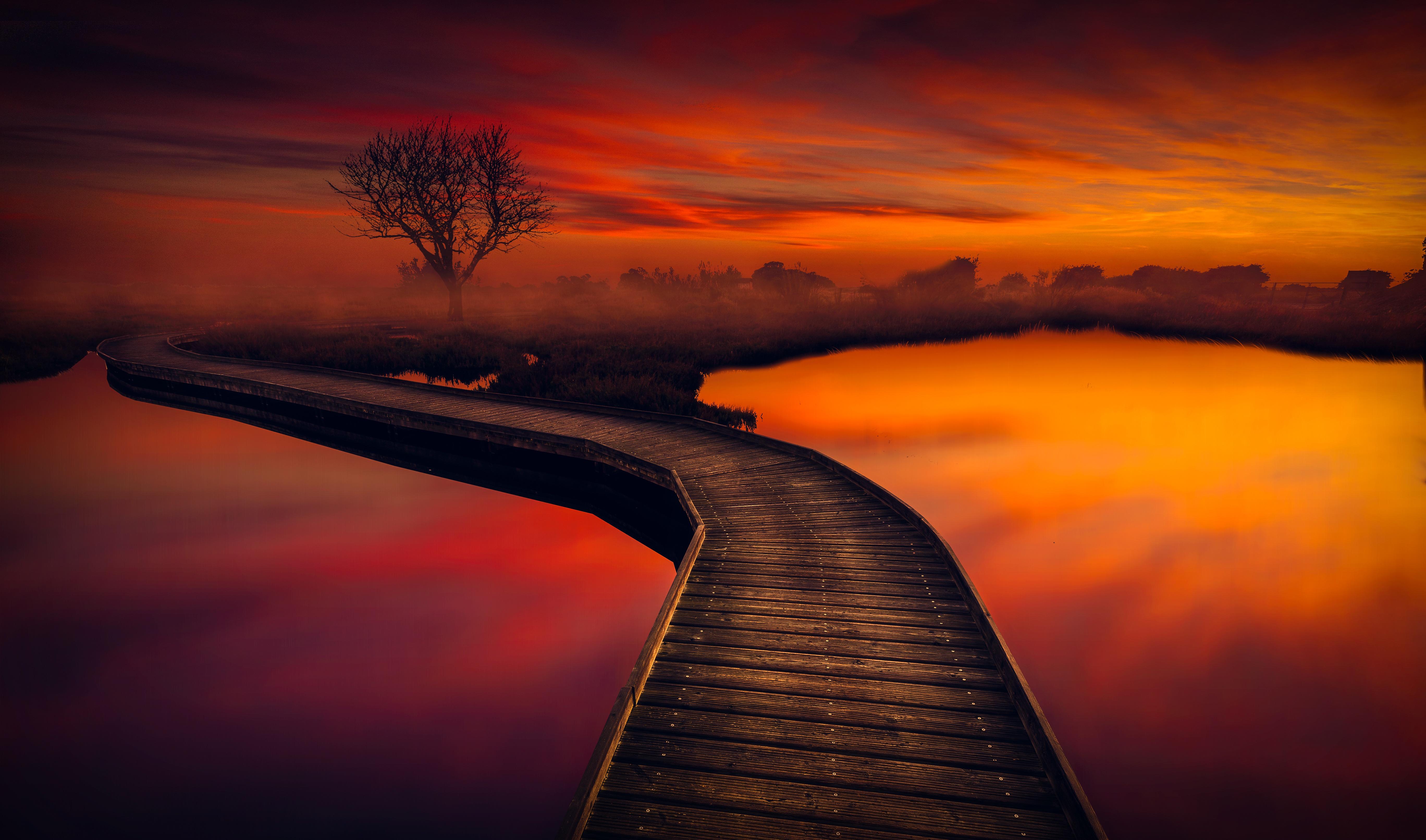 картинки на телефон мост с закатом давать мясо креветок