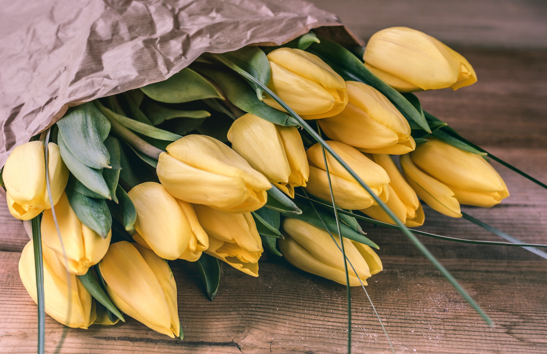 что, если фото букетов из тюльпанов высокого разрешения любит делать