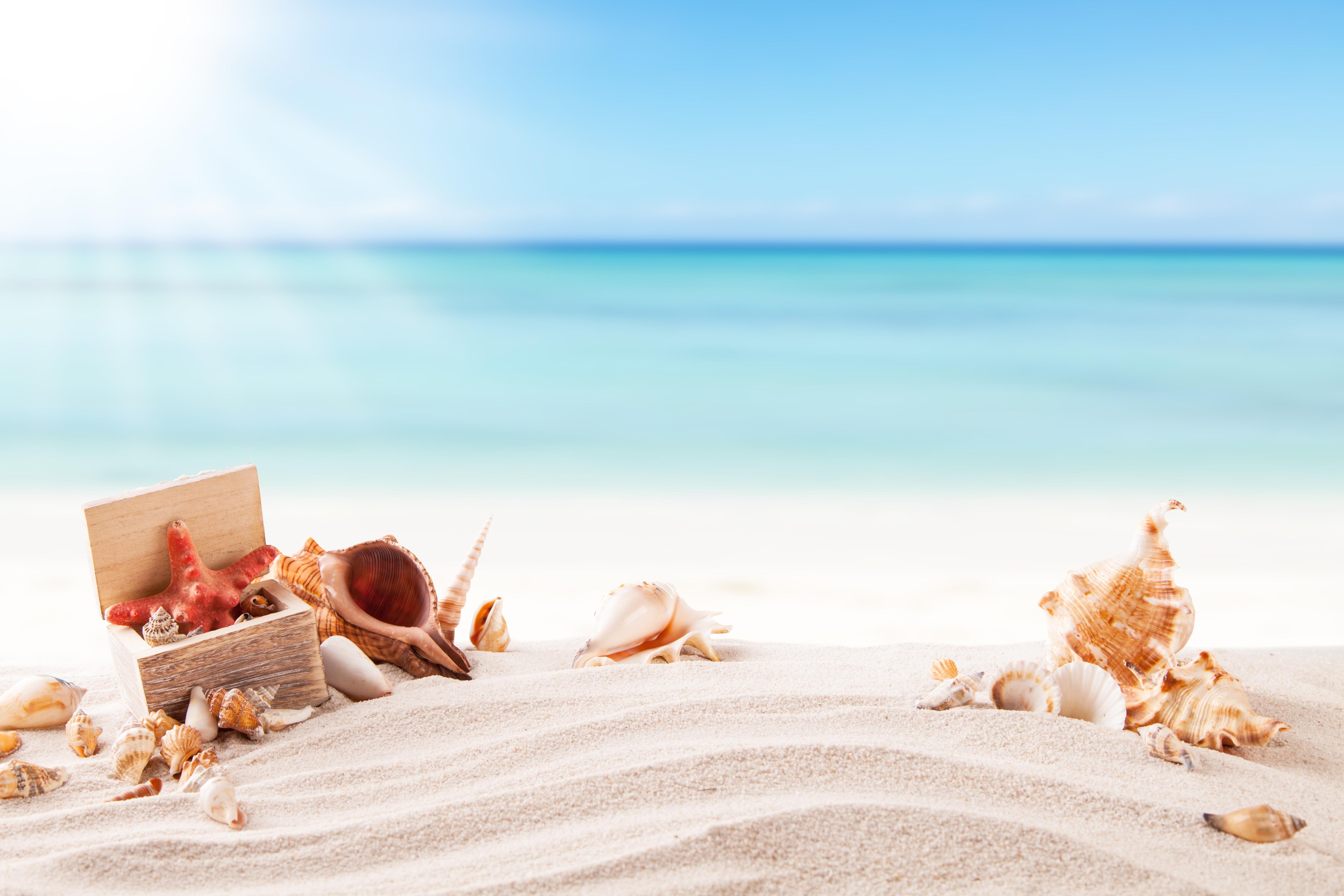 морская соль ракушки полотенце отдых загрузить